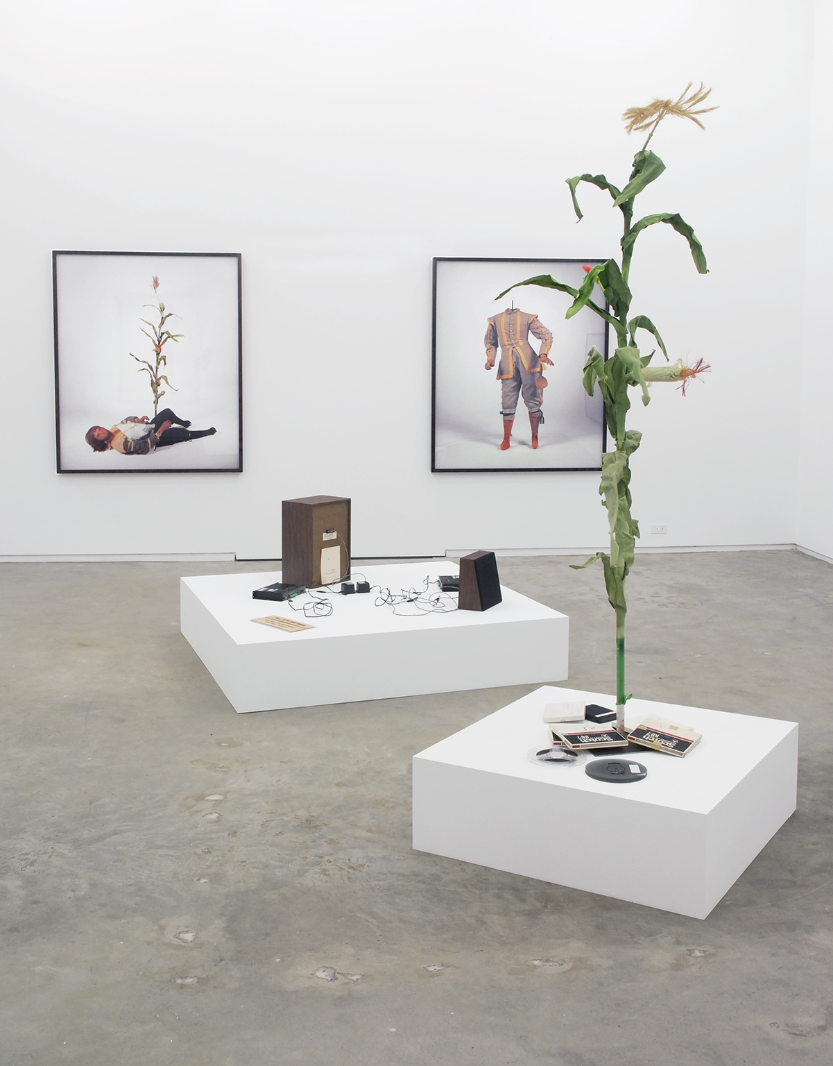 ​Sam Durant, installation view, ​Scenes from the Pilgrim Story: Natural History​, Catriona Jeffries, 2007 by