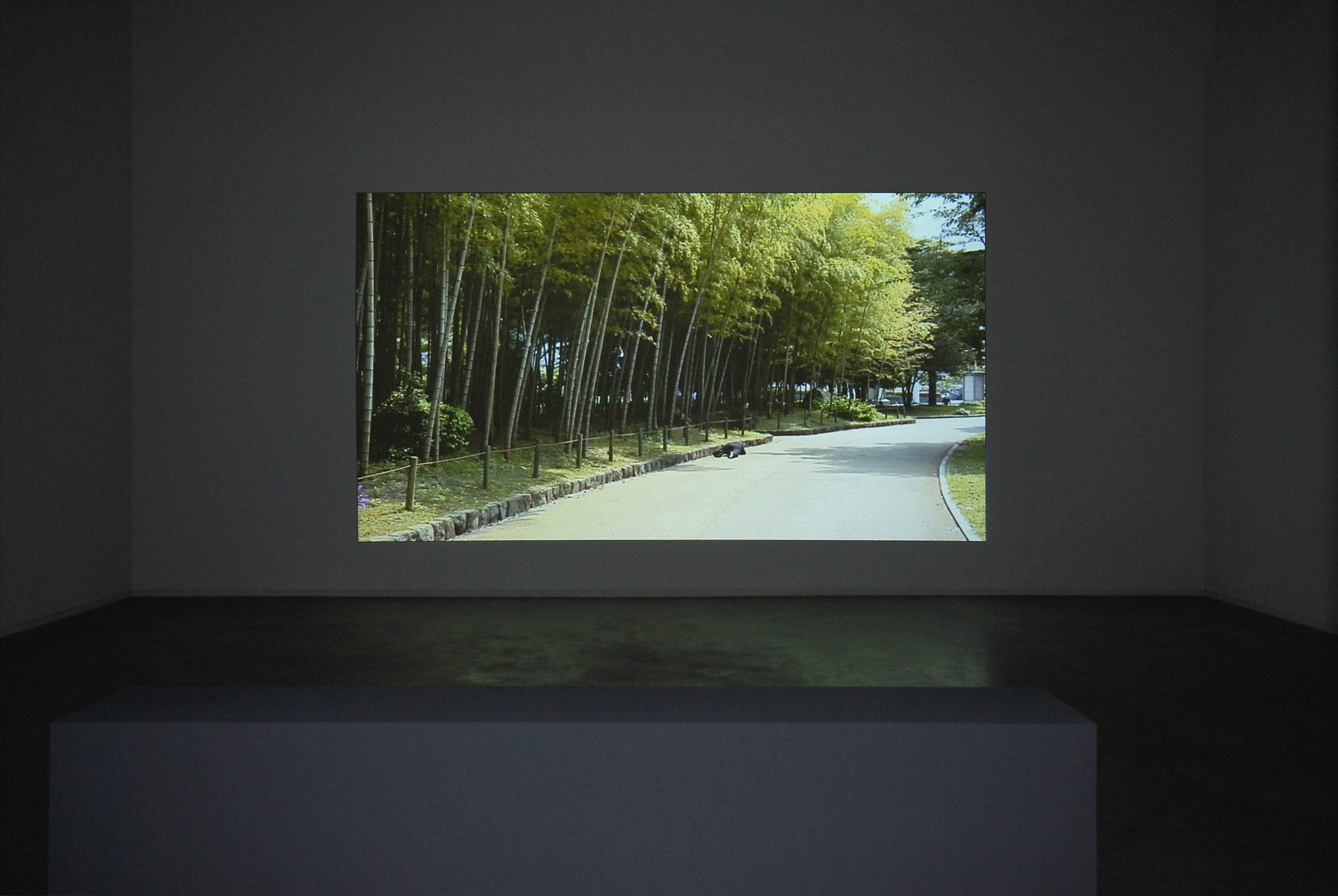Jin-me Yoon, As It Is Becoming (Beppu, Japan): Park, Former U.S. Army Base, 2008, single channel HD video projection, 14 minutes, 23 seconds by