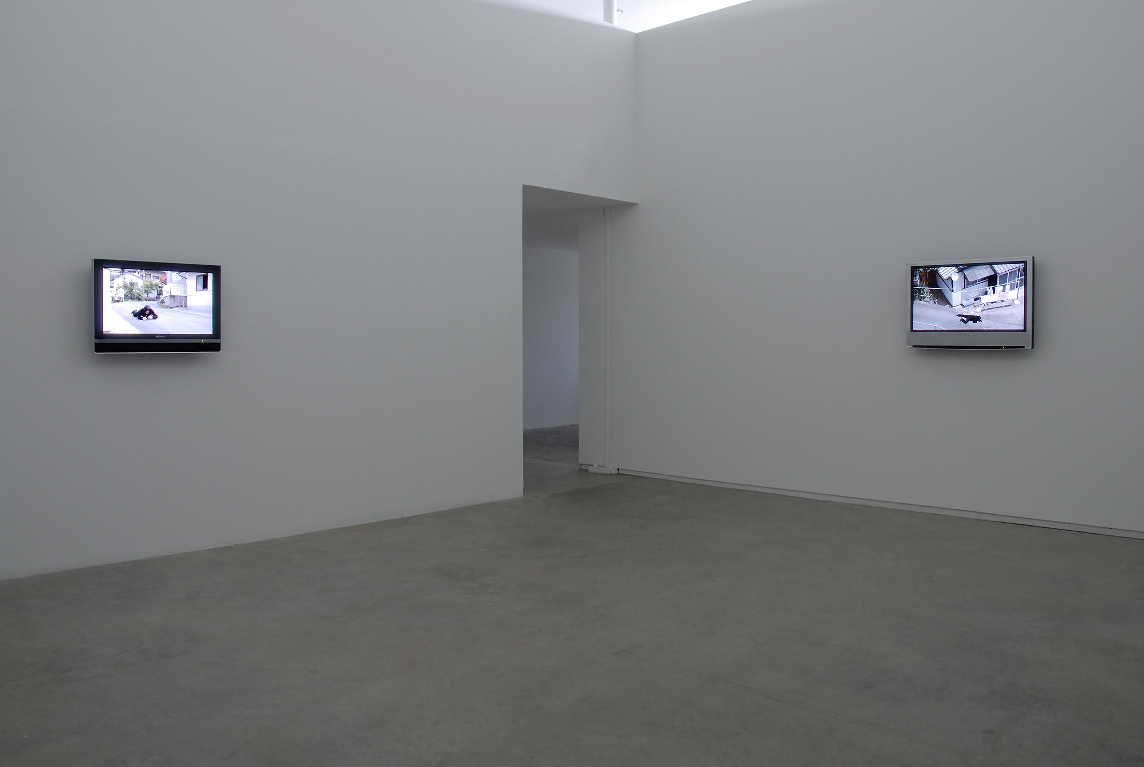 Jin-me Yoon, installation view, Catriona Jeffries, 2009 by
