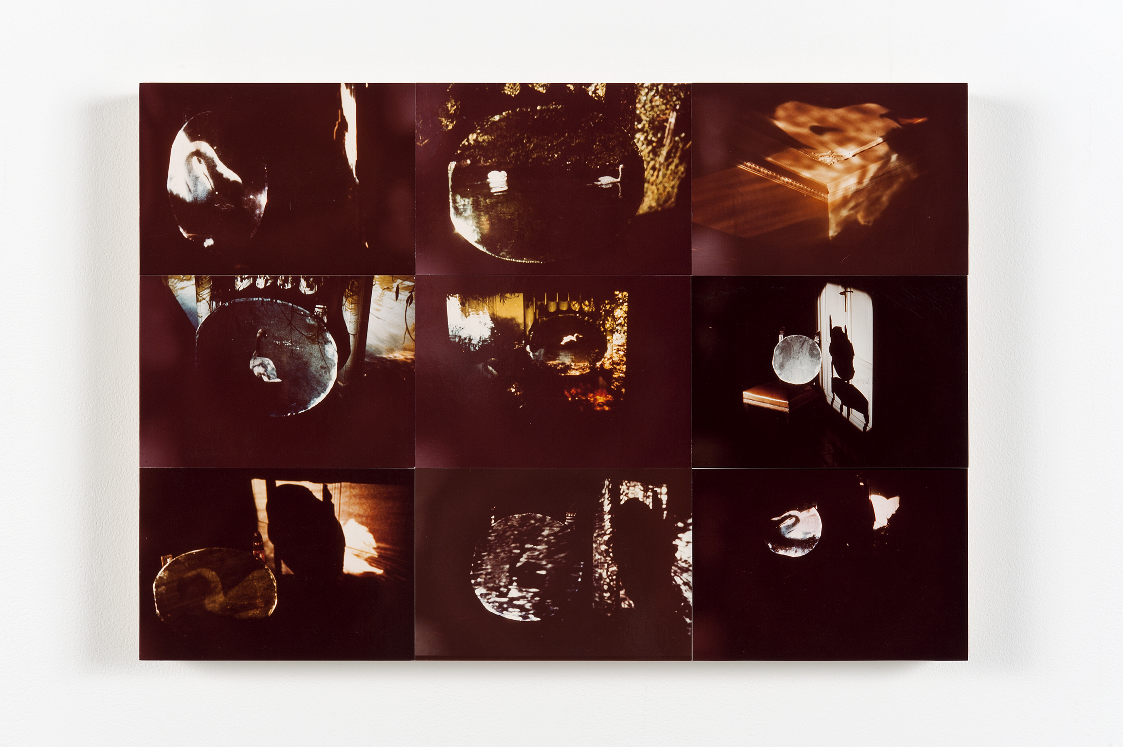 Robert Kleyn, Projections with Images of a Swan, 1977, colour photographs, 15 x 22 in. (38 x 55 cm) by