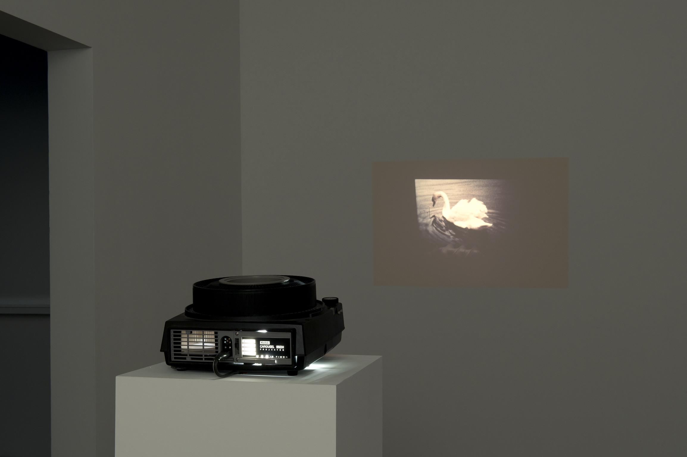 Robert Kleyn, Reflex, 1974, 35mm slide projector   by
