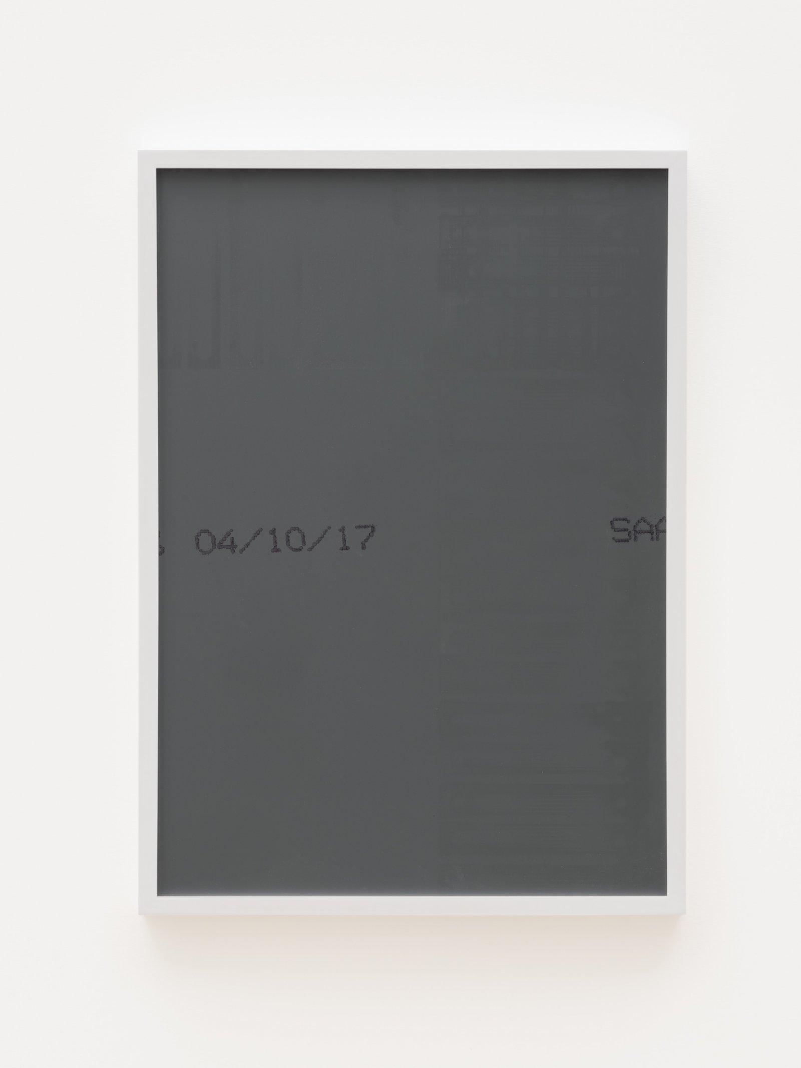 Abbas Akhavan, Untitled (animal selfie), 2017, colour digital print on archival paper, mirror, frame, 29 x 21 in. (74 x 53 cm) by Abbas Akhavan
