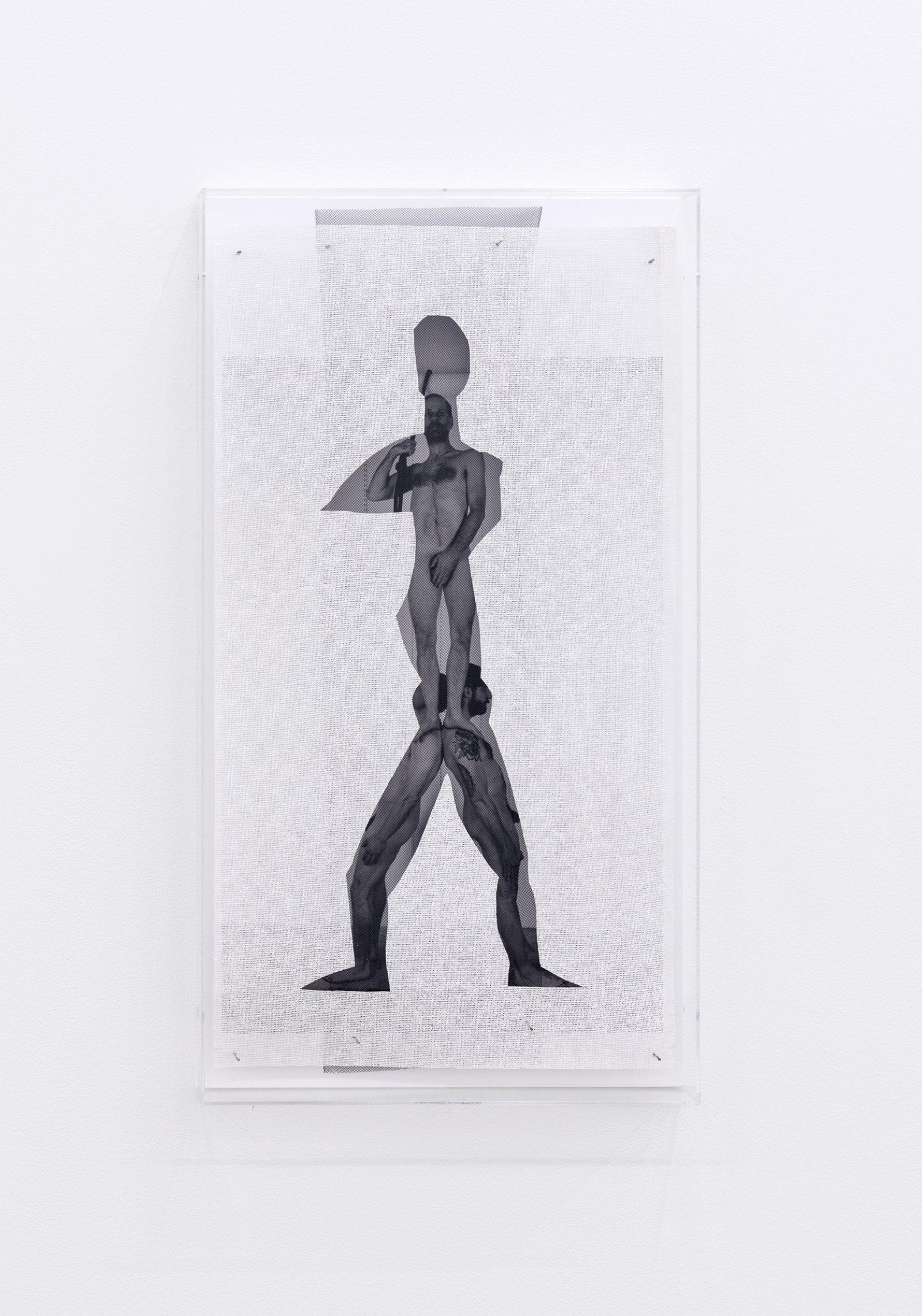 Valérie Blass, Je ne choisis pas (I don't choose), 2015, inkjet print, tulle, heavy buckram, plexiglass, 26 x 14 x 3 in. (66 x 34 x 6 cm)  by Valérie Blass