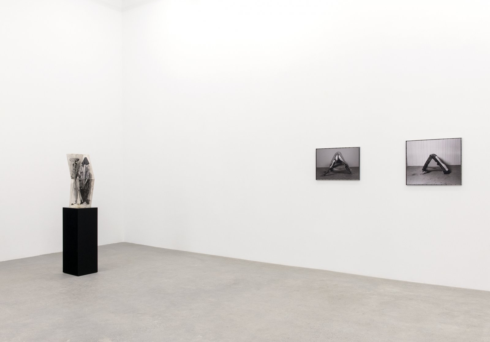 Valérie Blass, installation view, To only ever say the same thing forever the same thing, Catriona Jeffries, 2015-2016 by Valérie Blass