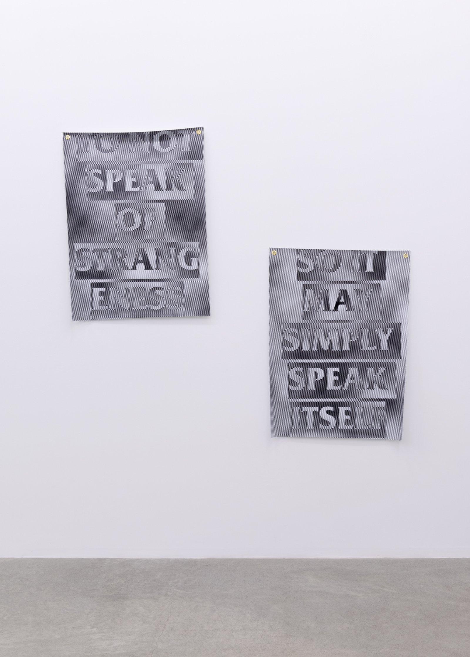 Raymond Boisjoly, Speak Itself, 2016, solvent-based inkjet print on vinyl, grommets, 66 x 74 in. (167 x 187 cm) by Raymond Boisjoly