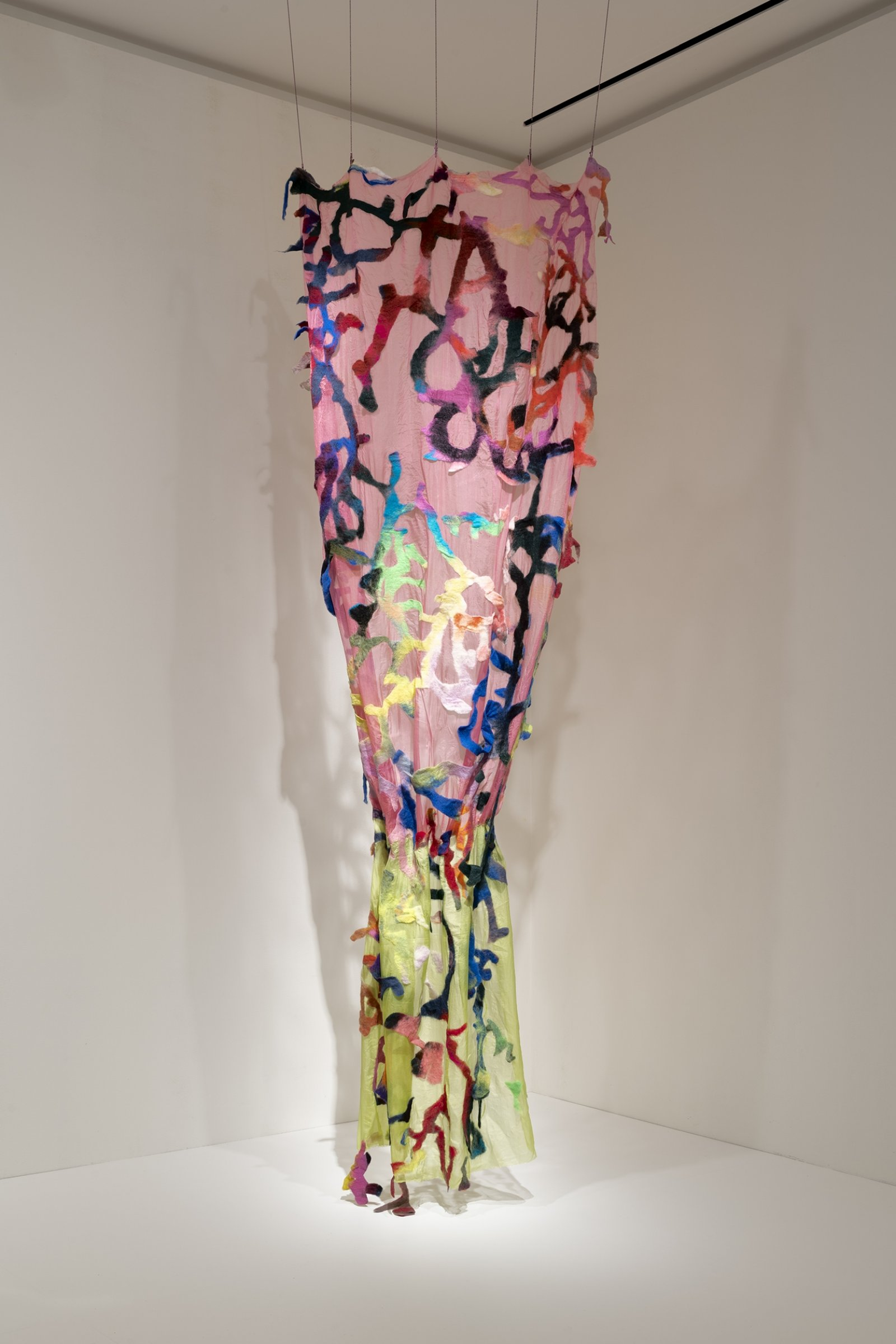 Rebecca Brewer, Total Loss, 2019, silk, wool felt, alligator clips, ball chain, 114 x 52 in. (290 x 132 cm). Installation view, Natural Horror, Frye Art Museum, Seattle, USA, 2020