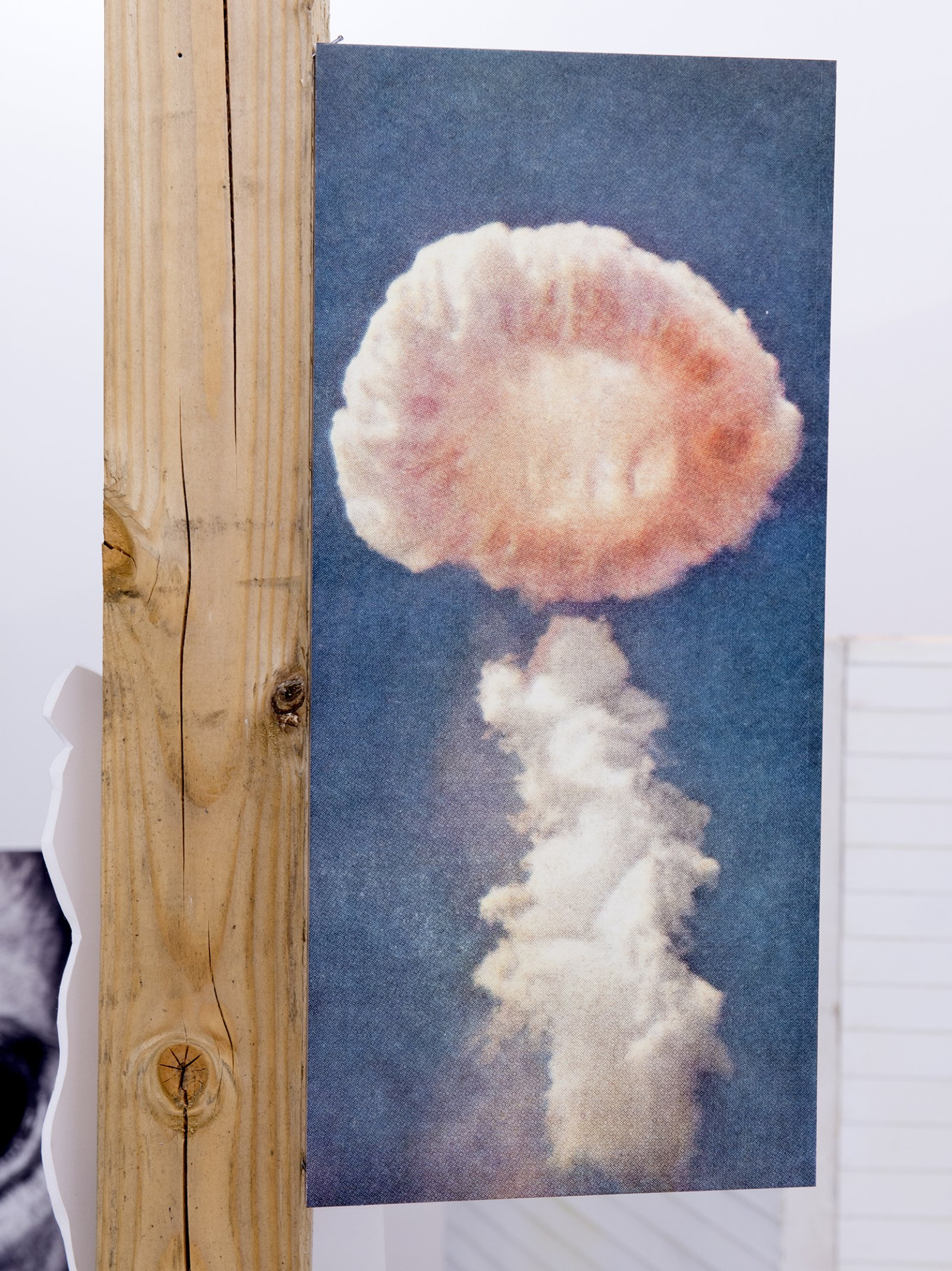 Geoffrey Farmer, Dreams of the sleeping monkey. (detail), 2014, douglas fir pole, 10 photographs mounted on foamcore, 200 x 4 x 4 in. (508 x 9 x 9 cm)​​ by Geoffrey Farmer