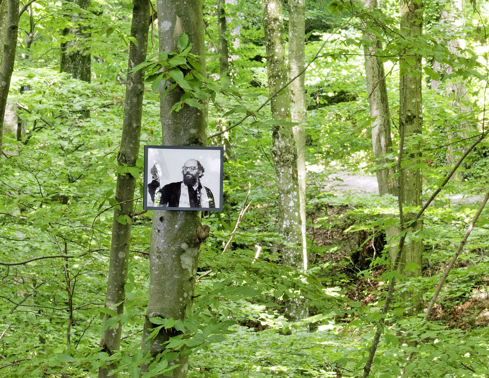 Geoffrey Farmer,If You Want To See Something Look at Something Else (Allen Ginsberg 1926–1997)fromThe Invisible Worm that Flies in the Night, 2011, 50 colour photographs mounted on perspex, framed, dimensions variable. Installation view,The Garden of Forking Paths, Migros Museum für Gegenwartskunst, Zurich, 2011
