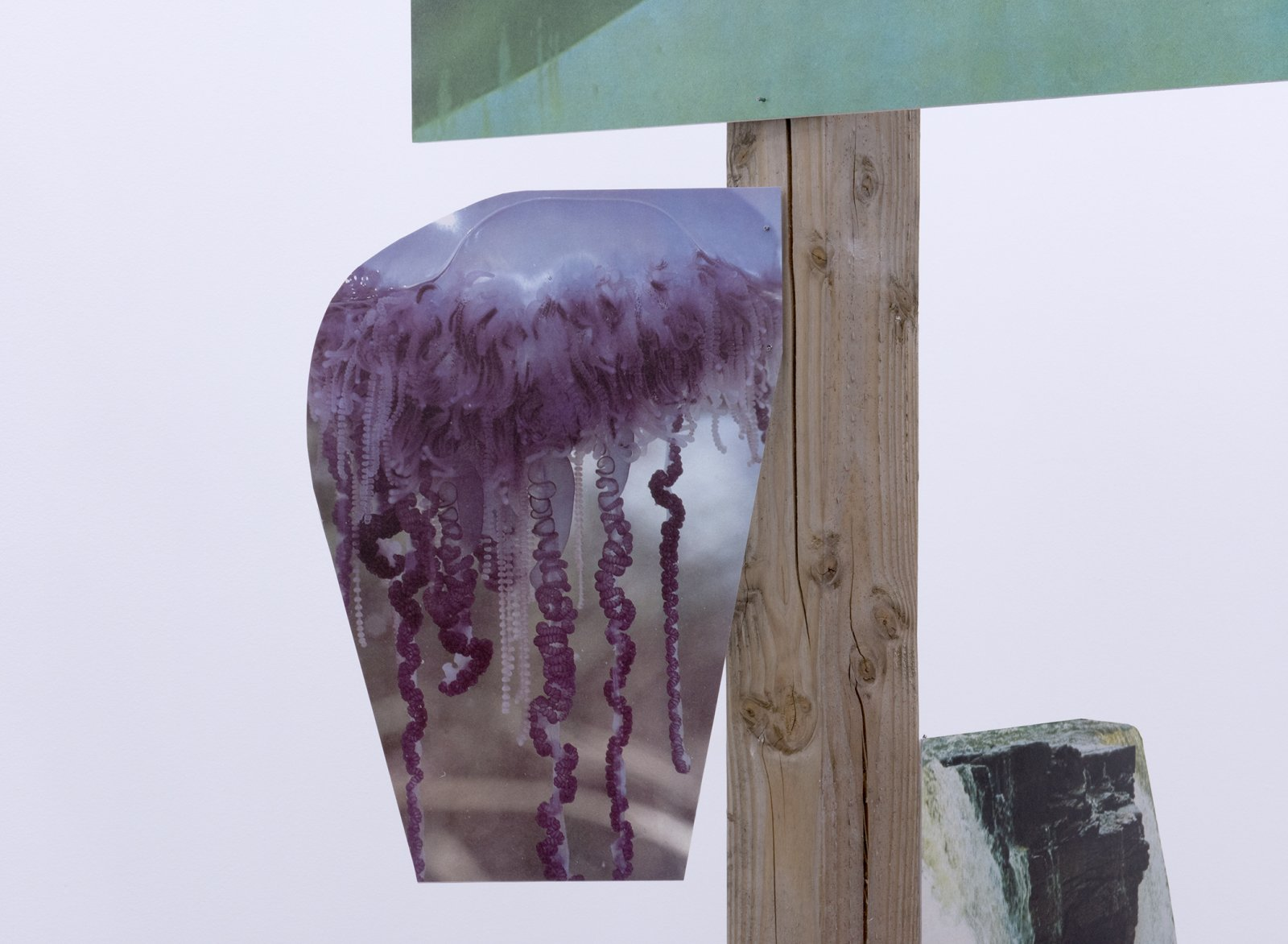 ​Geoffrey Farmer, Over, under, floating, rushing, with the delicate colour of violet. From curly hair grapes grow. This green belongs to the Arctic. (detail), 2014, douglas fir pole, 6 photographs mounted on foamcore, 200 x 4 x 4 in. (508 x 9 x 9 cm)​ by Geoffrey Farmer