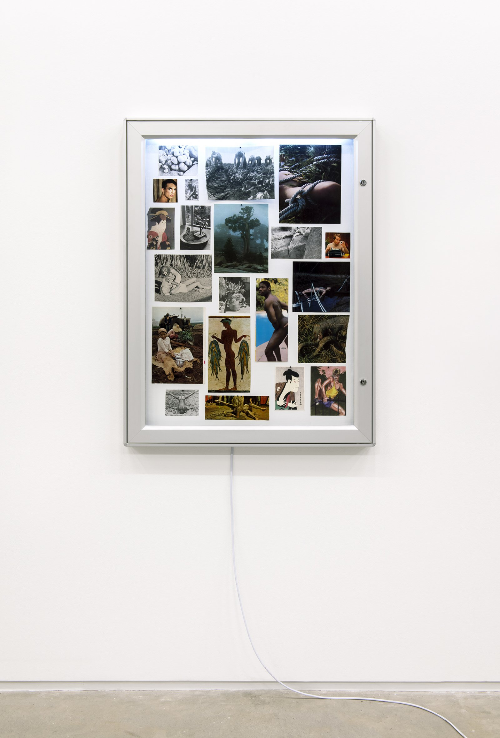 Geoffrey Farmer,Proof of an External World, 2011, display case, images cut from books and magazines, map tacks, 32 x 43 x 2 in. (82 x 108 x 5 cm)