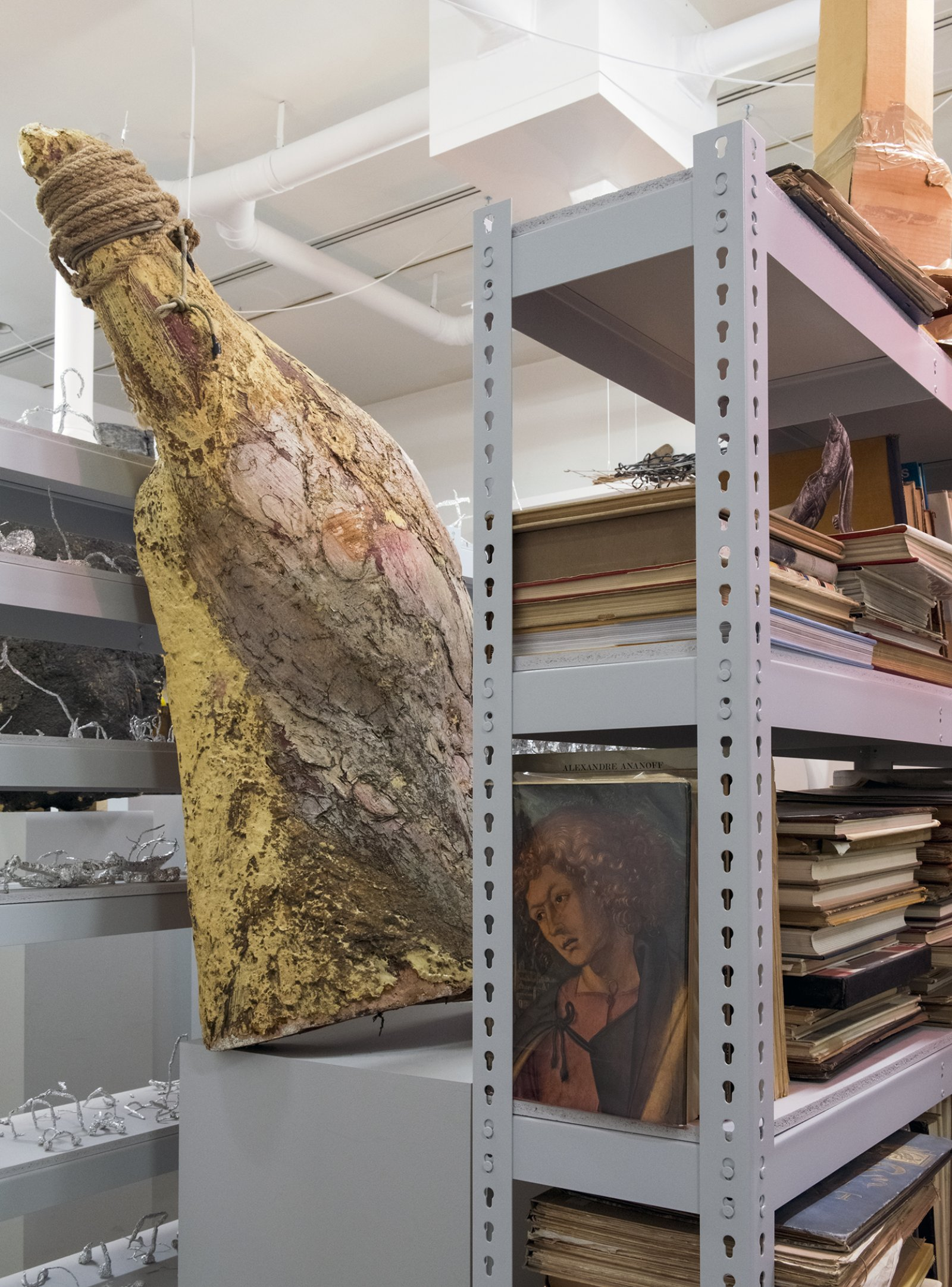 Farmer Storeroom Overture 2015 How Do I Fit This Ghost In My Mouth Vag 2015 Install 05 by Geoffrey Farmer