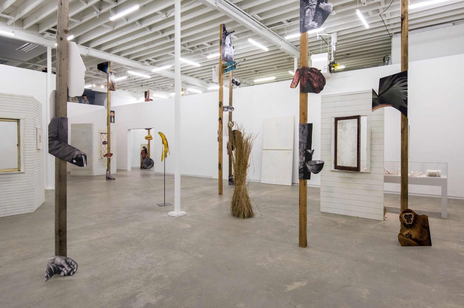 Geoffrey Farmer, installation view, The Grass and the Banana go for a walk, Catriona Jeffries, 2014 by Geoffrey Farmer