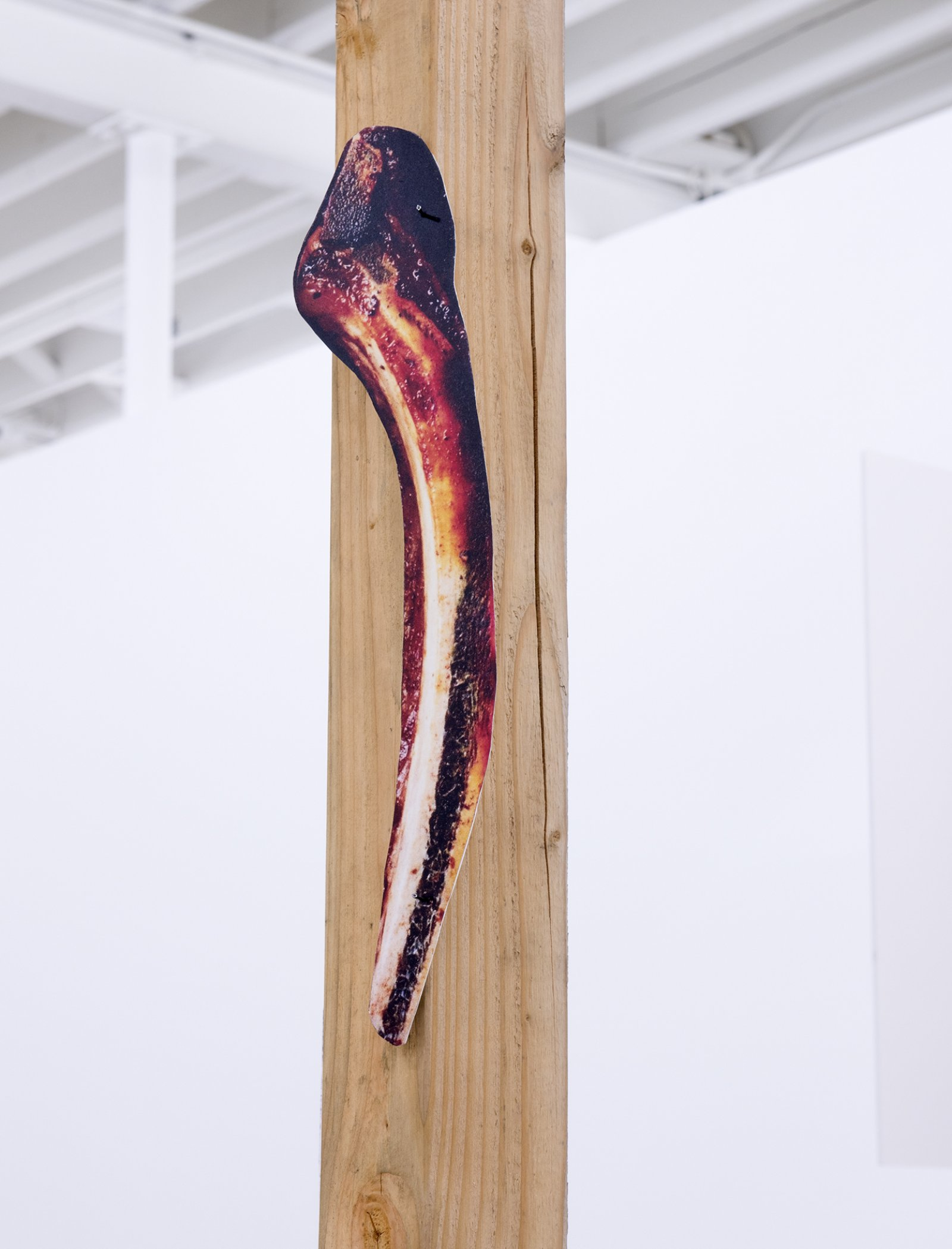 Geoffrey Farmer, The other ate one man, one man was set adrift, one man turned into a snake, one man washed ashore and became a statue and the others eyes were stolen by the owl. (detail), 2014, douglas fir pole, 6 photographs mounted on foamcore, 200 x 4 x 4 in. (508 x 9 x 9 cm)
