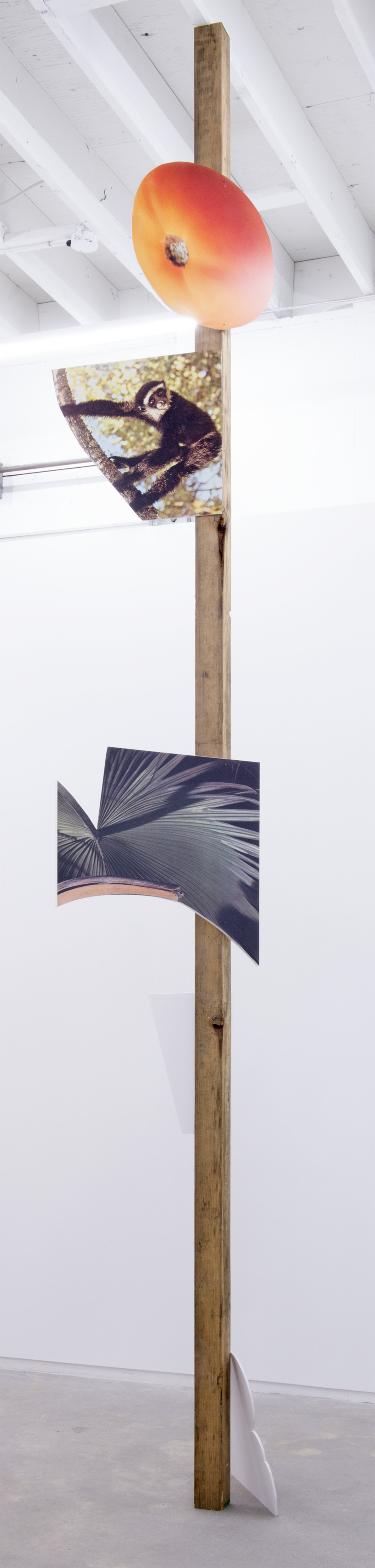 Geoffrey Farmer,This one is the lightness of a palm frond, the sound of a lute, the colour of fruit. The expressions of a monkey. A large orange eye. I drift in the warm wind., 2014, douglas fir pole, 6 photographs mounted on foamcore, 200 x 4 x 4 in. (508 x9 x 9 cm)