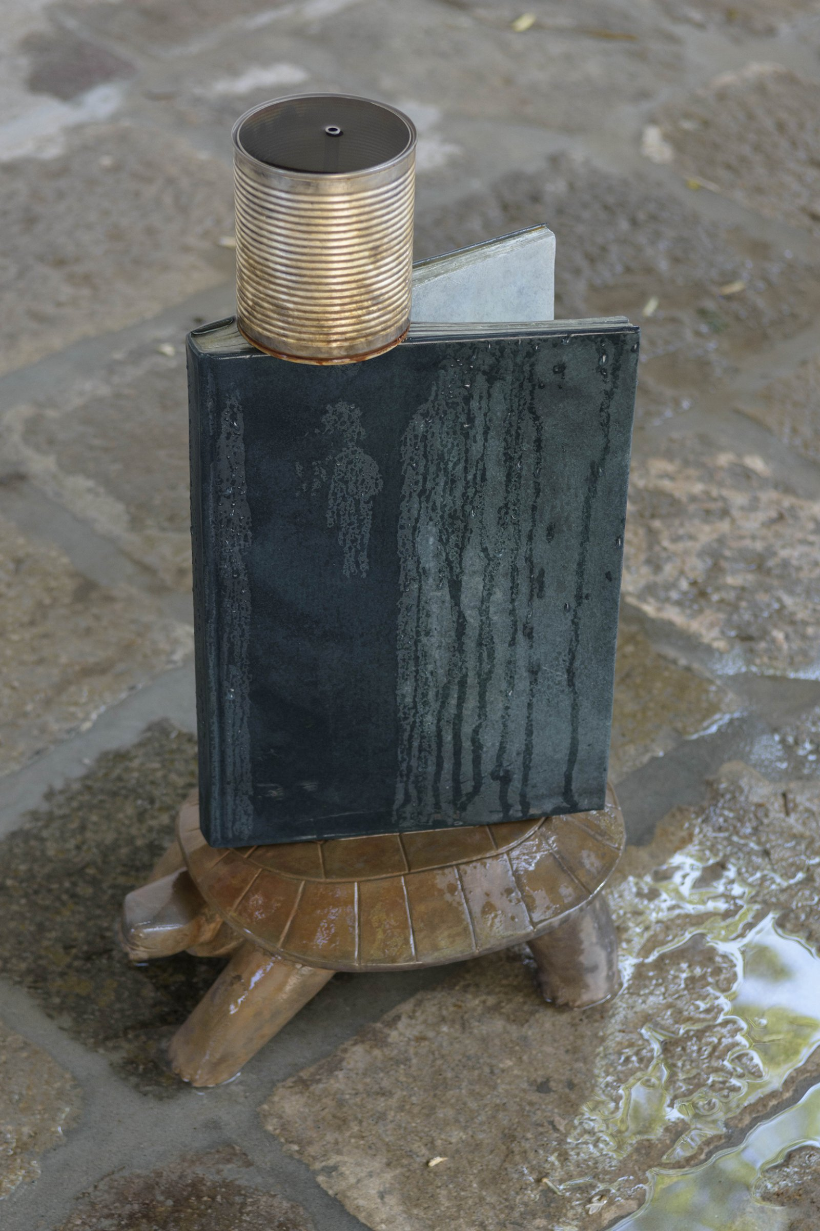 Geoffrey Farmer, Turtle, 2017, cast bronze, tin can, waterworks, 28 x 12 x 9 in. (70 x 30 x 22 cm). Installation view, A way out of the mirror, Canada Pavilion, 57th Venice Biennale, Venice, Italy