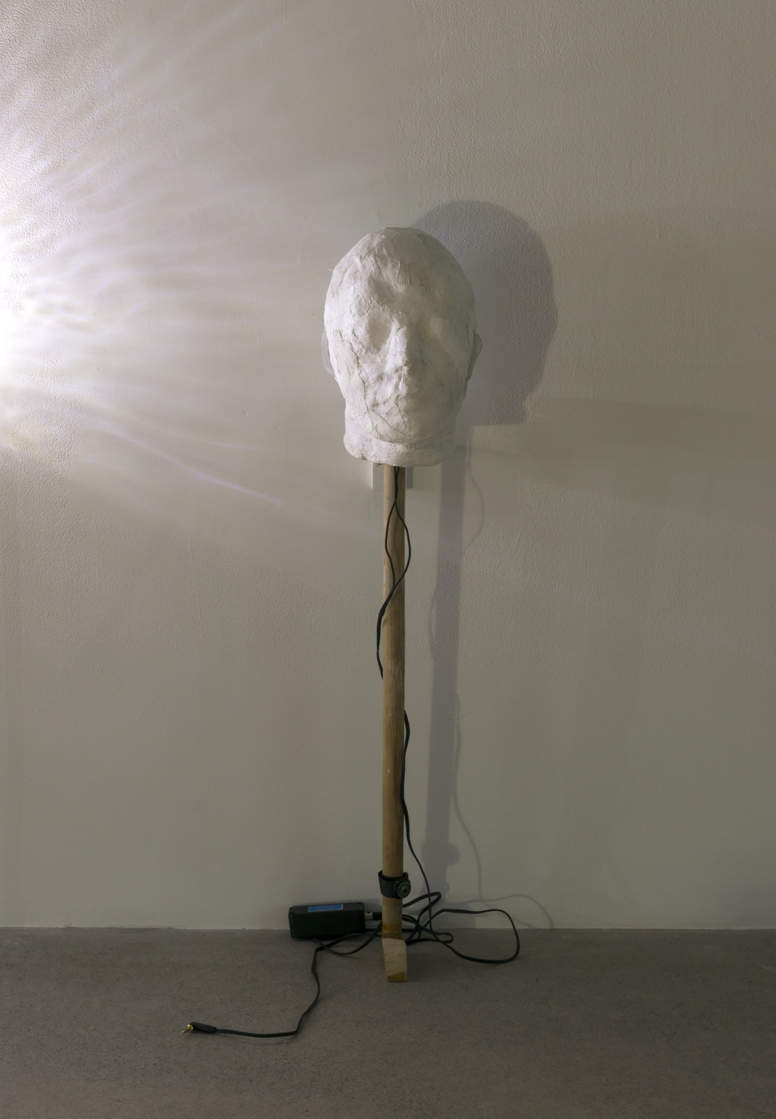 Julia Feyrer, Little Pitchers have Big Ears, 2012, plaster bandage, mugwort, mugwort oil, binaural microphones, silicone ears, cotton, felt, wood, compass, 36 x 8 x 9 in. (91 x 20 x 23 cm)
