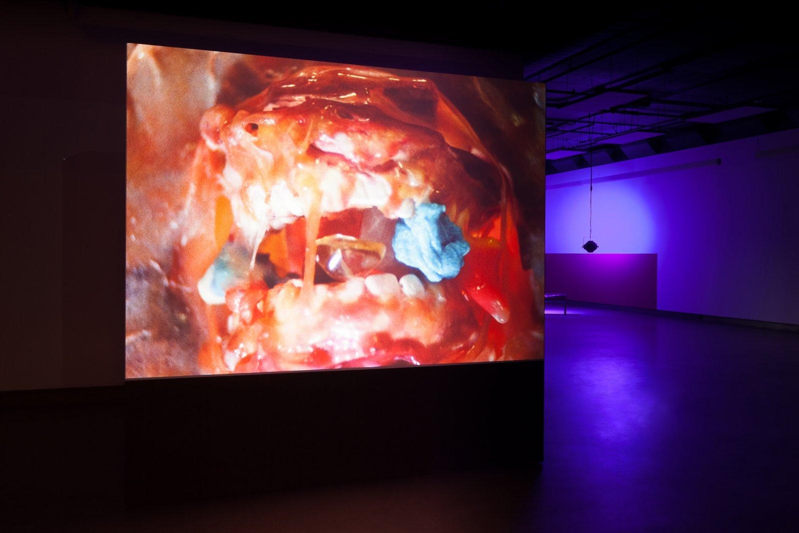 Julia Feyrer, New Pedestrians, 2018, 16mm film transferred to digital with sound, 4 minutes. Installation view, New Pedestrians, Dazibao, Montreal, Canada, 2019