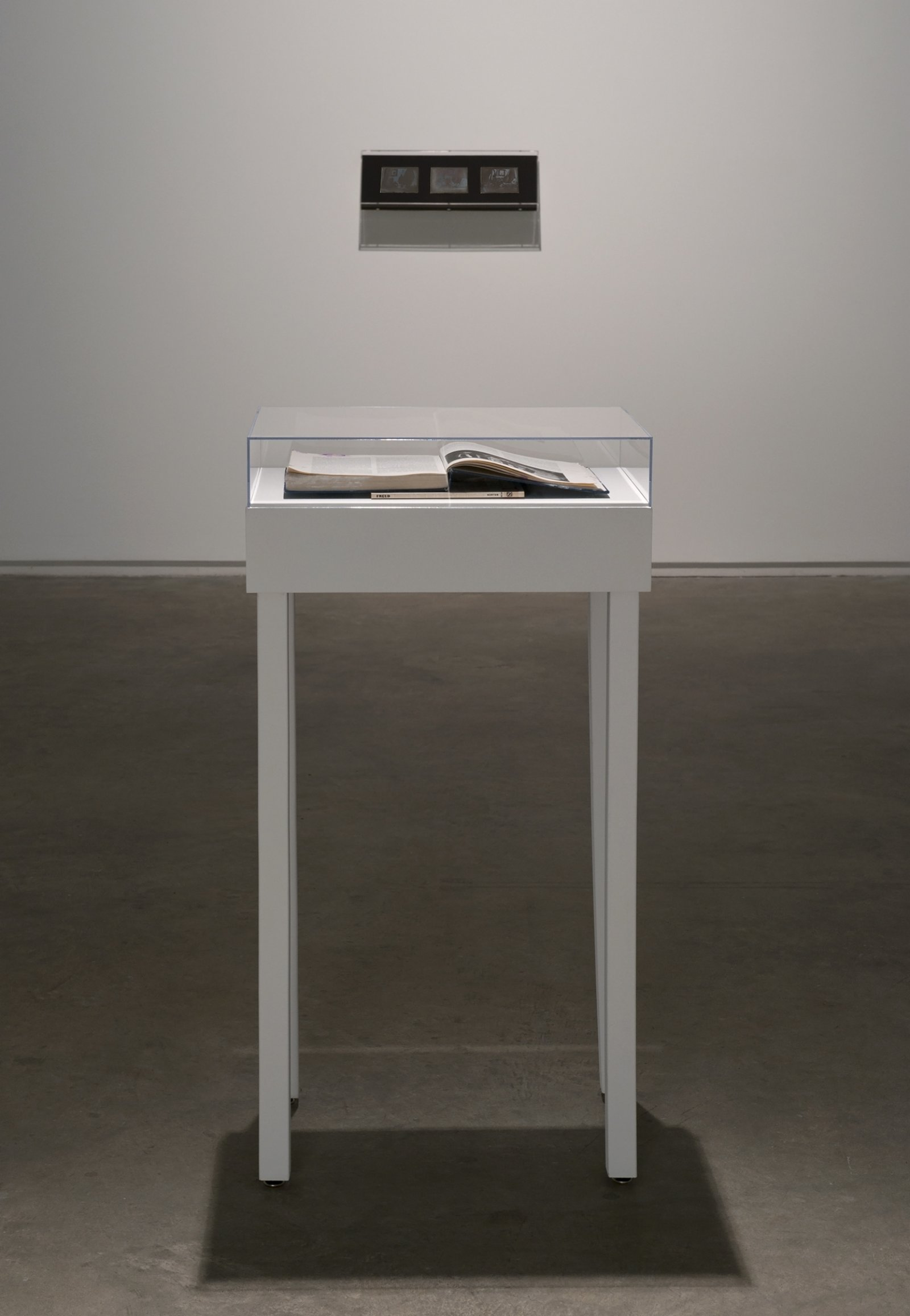 Julia Feyrer, History of Photography from The artist's studio, 2012, mixed media, dimensions variable by Julia Feyrer