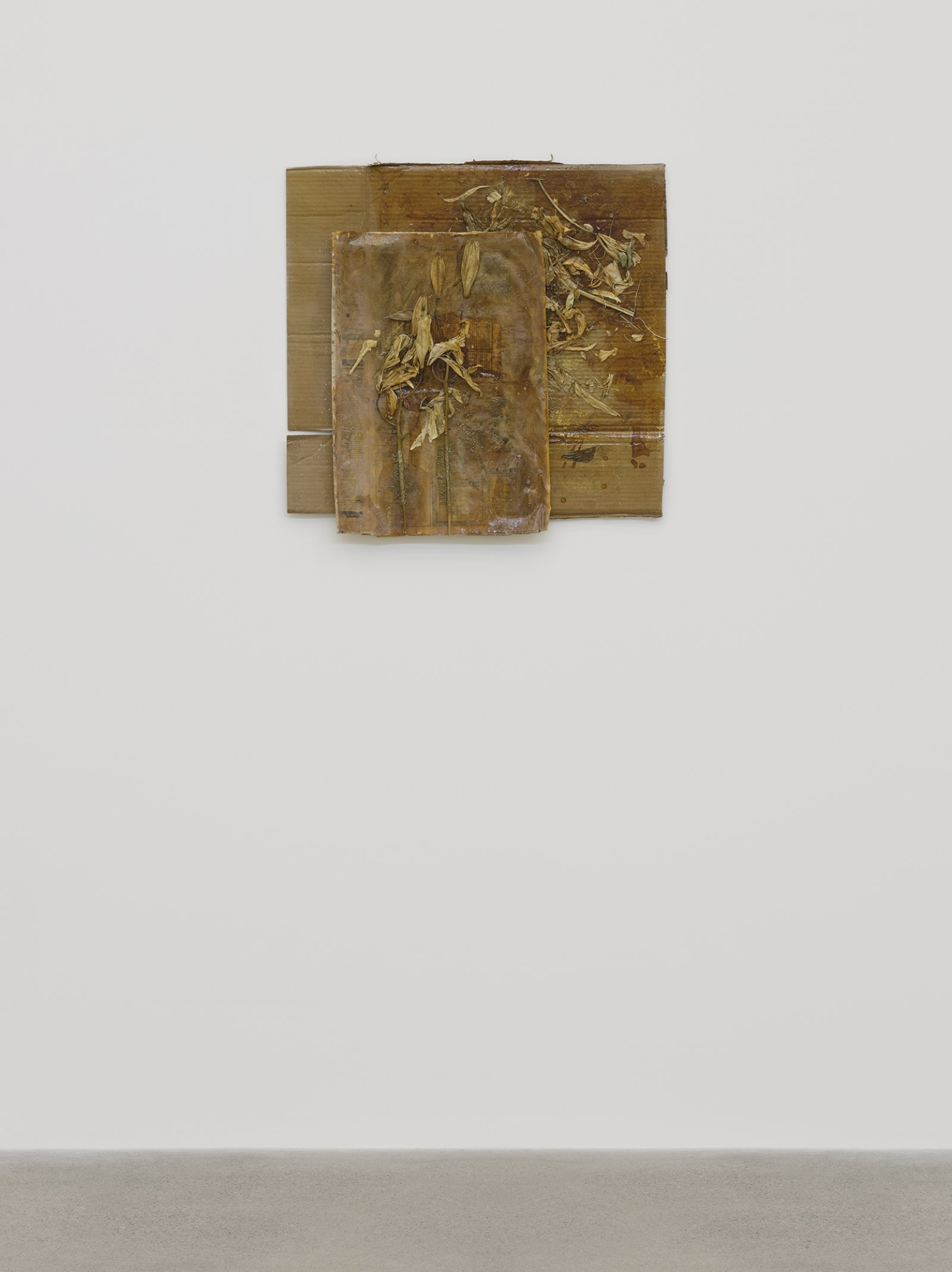 Rochelle Goldberg, Dirty Wall X, 2019, cardboard, newsprint, tissue paper, lilies, shellac, gold pigment, dirt from the river, 28 x 28 in. (71 x 71 cm) by Rochelle Goldberg