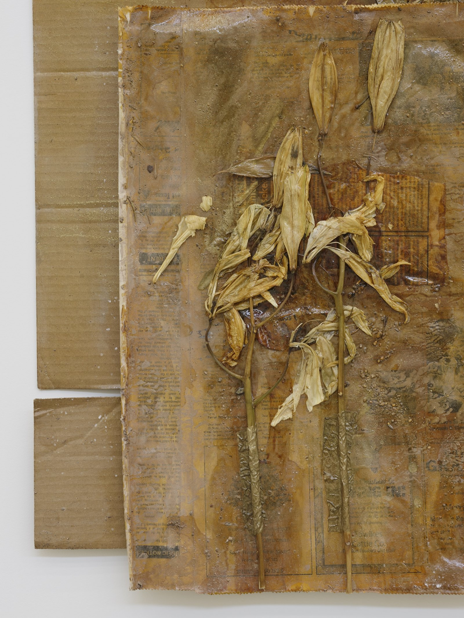 Rochelle Goldberg, Dirty Wall X (detail), 2019, cardboard, newsprint, tissue paper, lilies, shellac, gold pigment, dirt from the river, 28 x 28 in. (71 x 71 cm) by Rochelle Goldberg