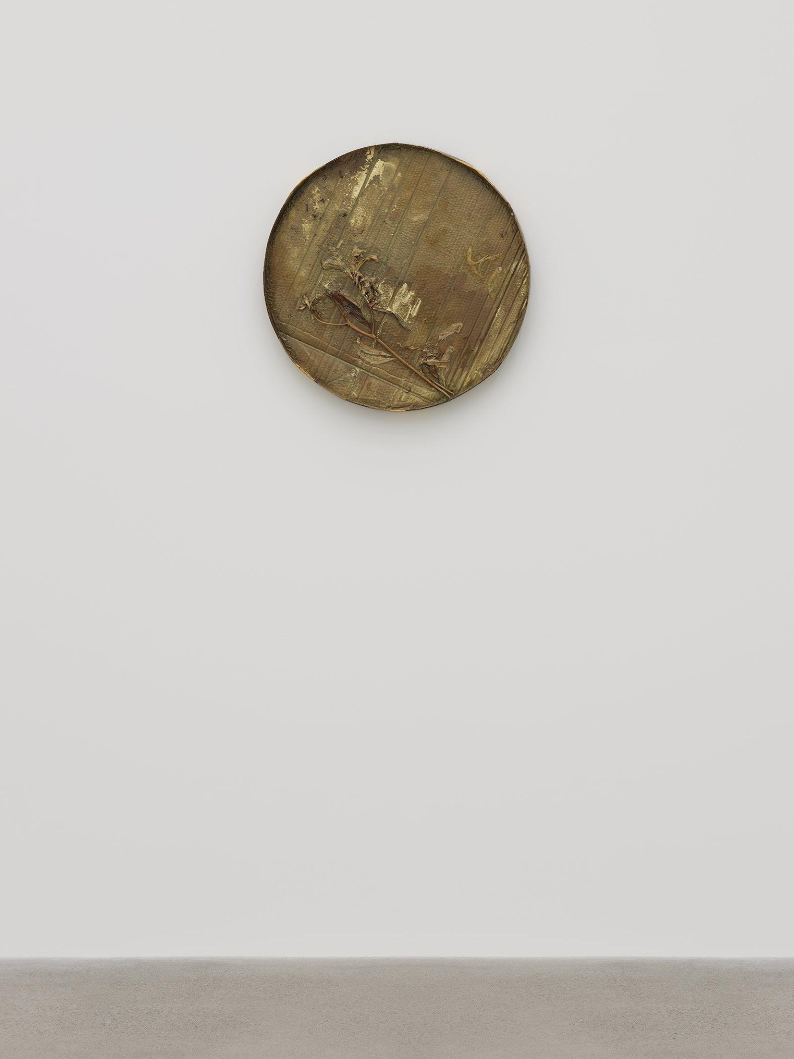 Rochelle Goldberg, Halo I, 2019, cardboard, tissue paper, lilies, shellac, gold pigment, gold tape, dirt, 27 x 27 x 3 in. (67 x 67 x 6 cm) by Rochelle Goldberg