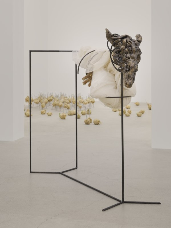 Rochelle Goldberg, installation view, gatekeepers, Catriona Jeffries, Vancouver, 2019