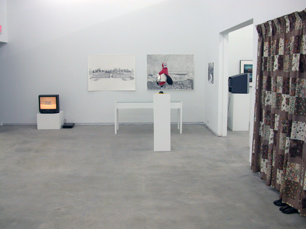 ​Brian Jungen, Roy Kiyooka, Myfanwy MacLeod, Alex Morrison, Isabelle Pauwels, installation view, 274 East 1st​​​, 2006​​​​ by
