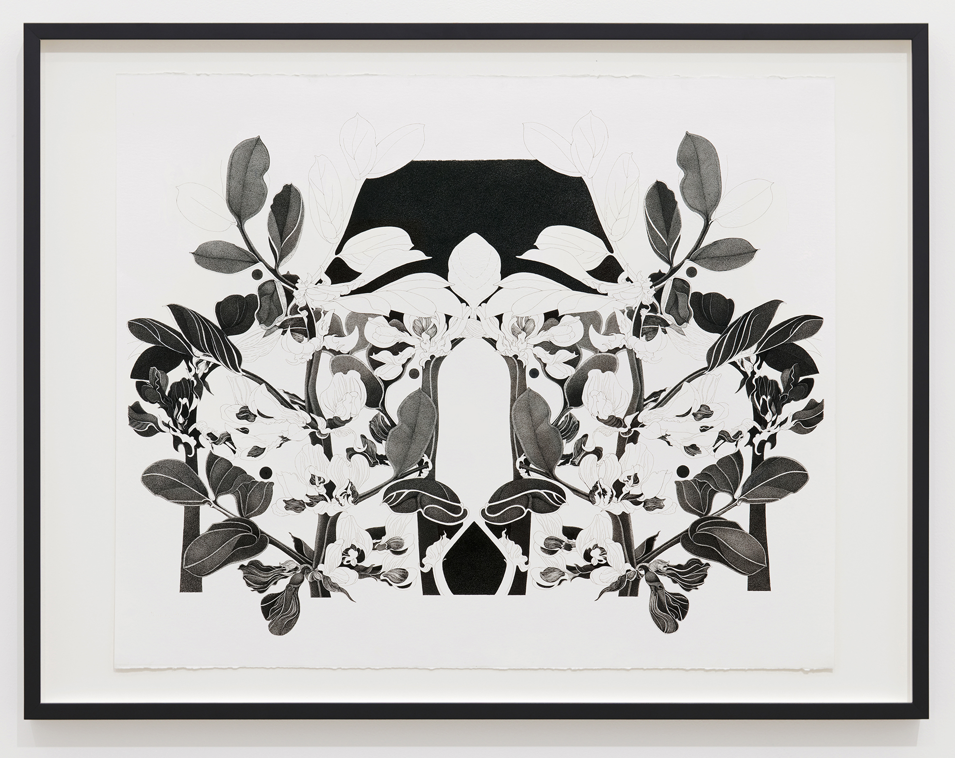 Charmian Johnson, not titled, 1978–80, ink and graphite on paper, 26 x 34 in. (65 x 85 cm) by
