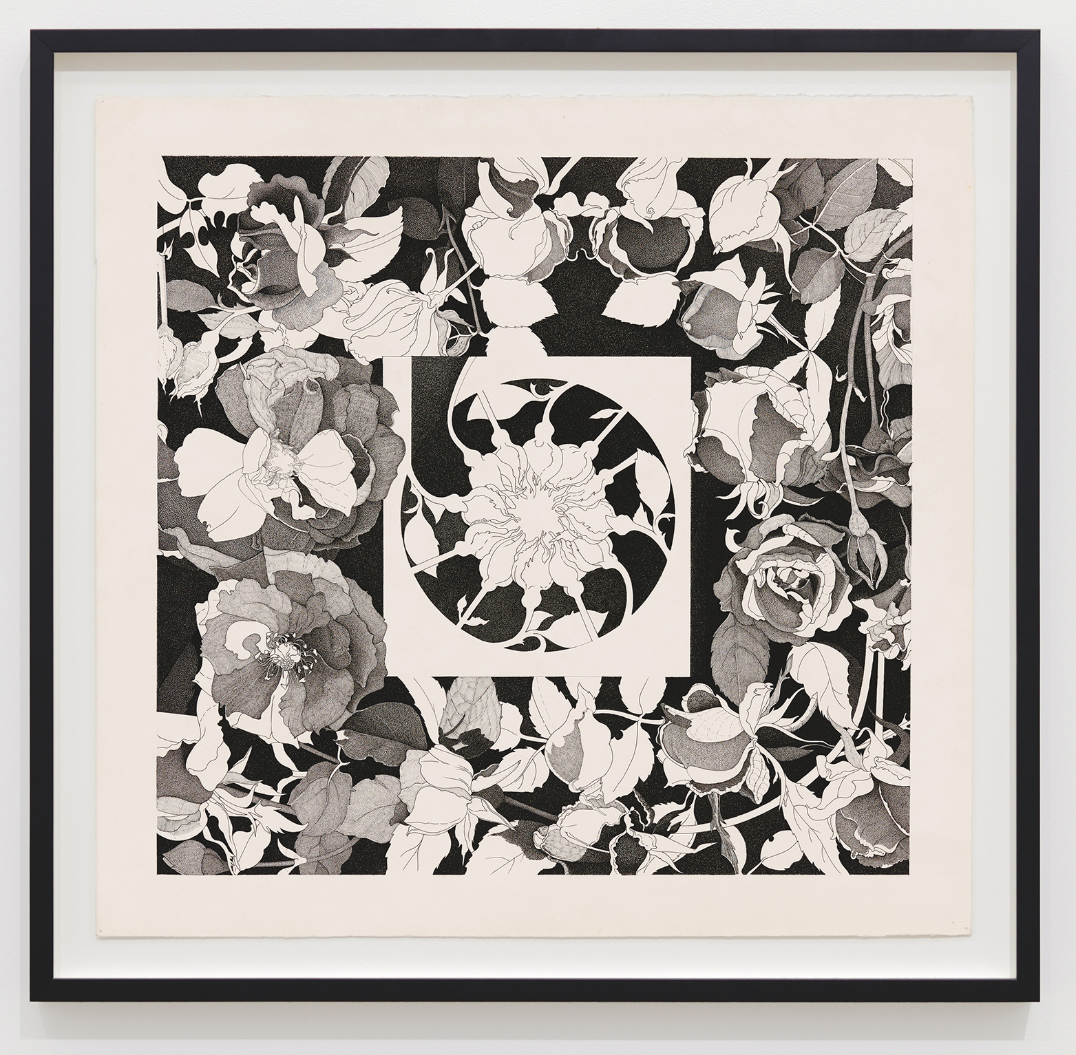 Charmian Johnson, not titled, c. 1978–80, ink on paper, 25 x 26 in. (64 x 67 cm) by