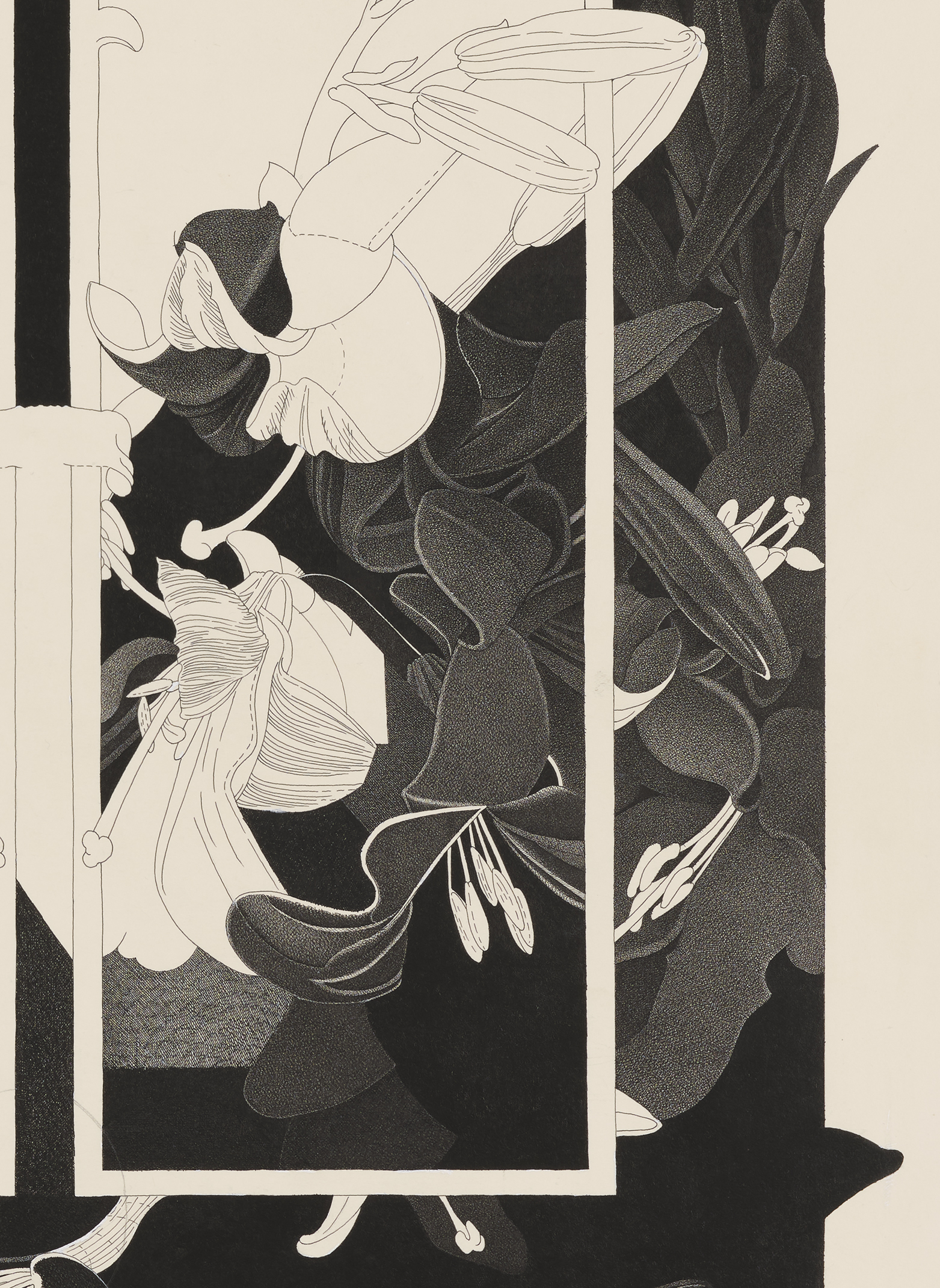 Charmian Johnson, not titled (detail), 1980, ink and graphite on paper, 30 x 26 in. (76 x 65 cm) by