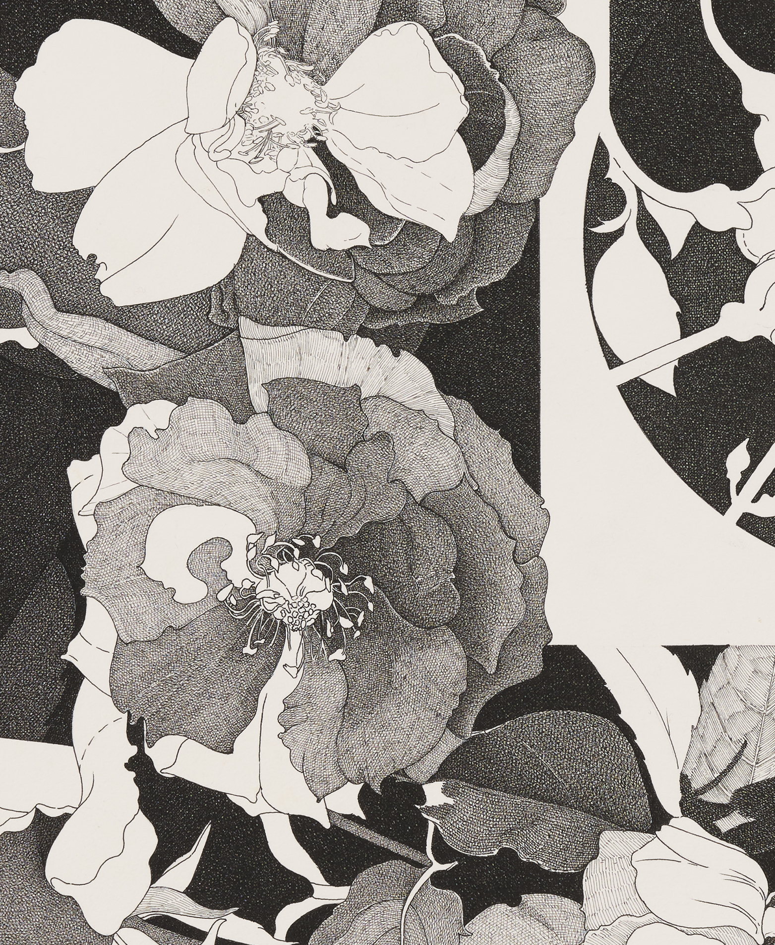 Charmian Johnson, not titled (detail), c. 1978–80, ink on paper, 25 x 26 in. (64 x 67 cm) by