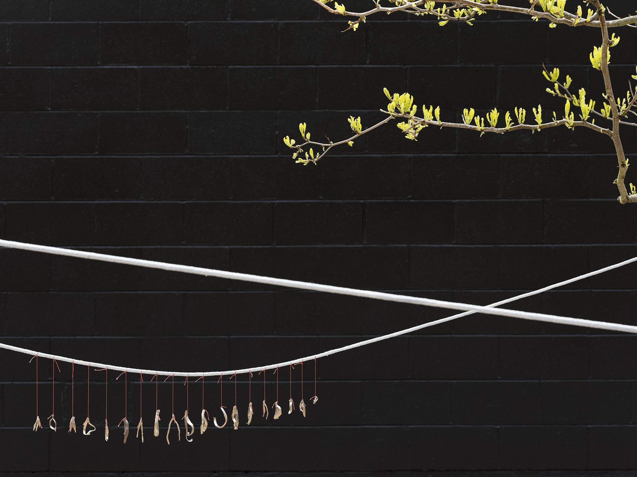 ​Kate Newby, I could feel it in the air, 2019, brass, silk thread, rope, 24 x 7 in. (61 x 18 cm) by