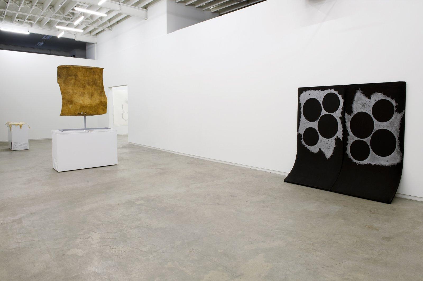 Brian Jungen, installation view, Catriona Jeffries, 2010  by Brian Jungen