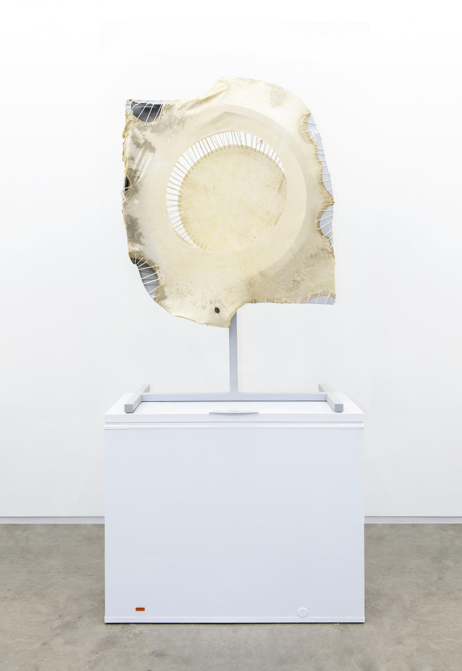 Brian Jungen,Companion, 2013, steel, deer hide, audi fenders, freezer, 103 x 51 x 28 in. (261 x 130 x 71 cm)