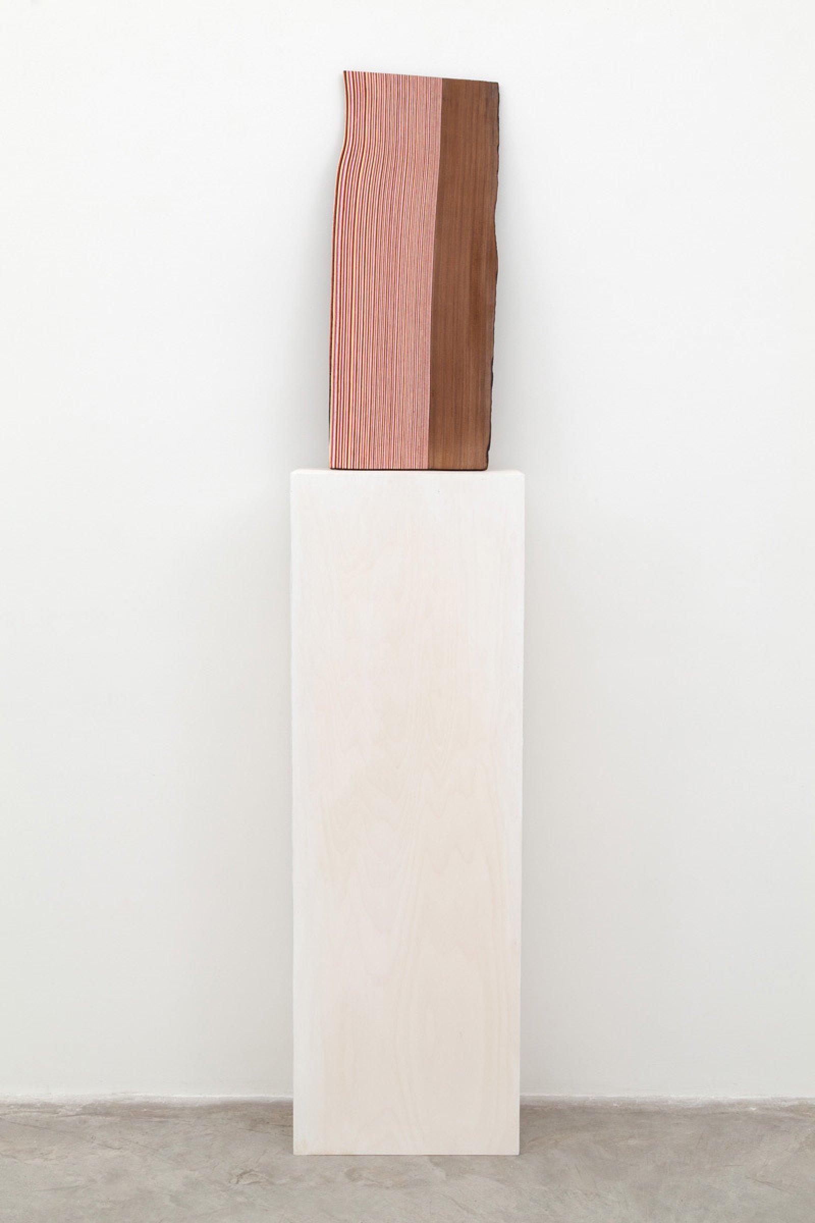 Brian Jungen,Shake, 2014, cedar, alkyd-resin enamel, 28 x 12 x 1 in. (70 x 29 x 2 cm)