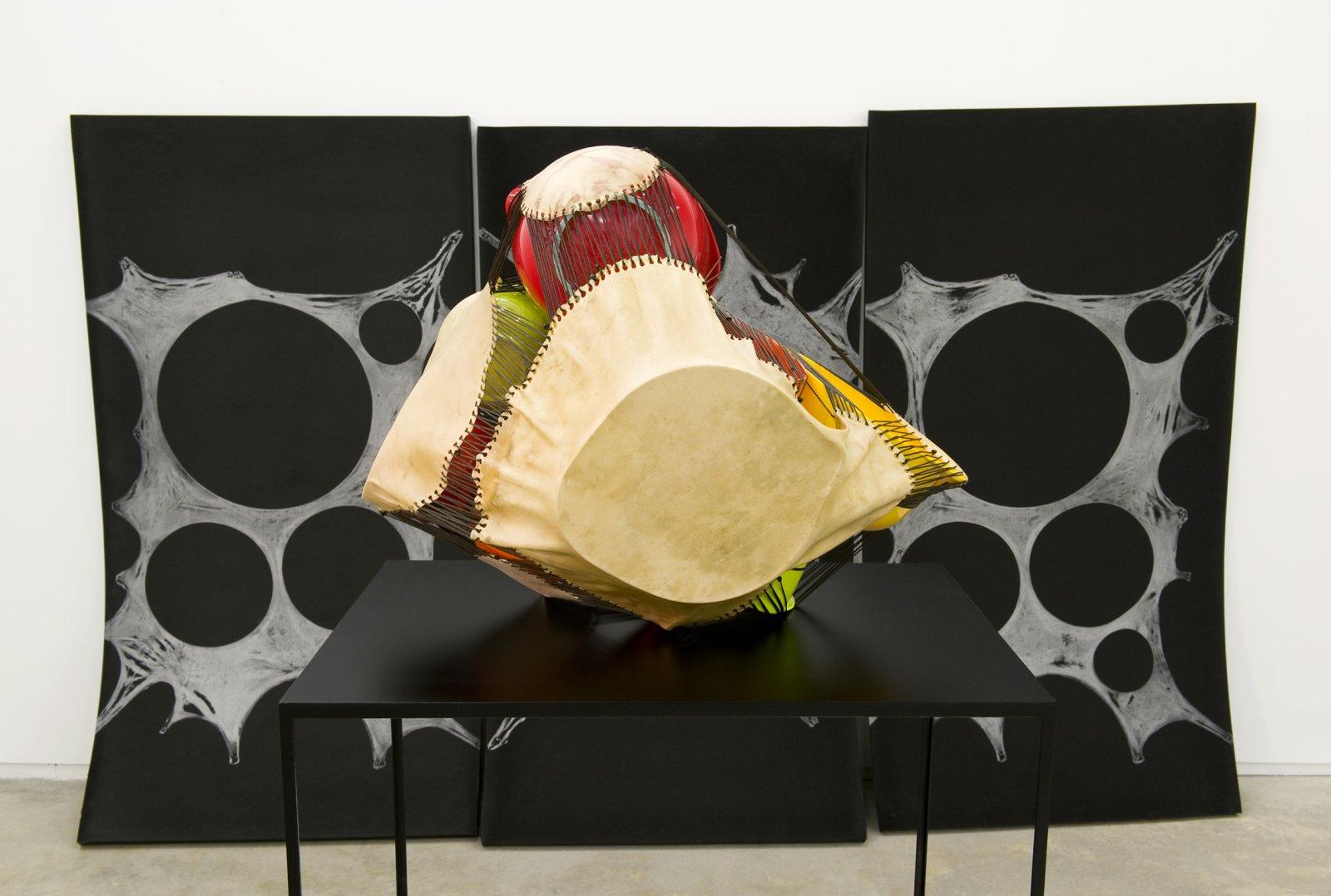 Brian Jungen,Subject, Silver, Prism (detail), 2011,foam, silver relief ink, plastic bowls, deer hide, tarred twine, steel, 78 x 120 x 300 in. (198 x 305 x 762 cm)