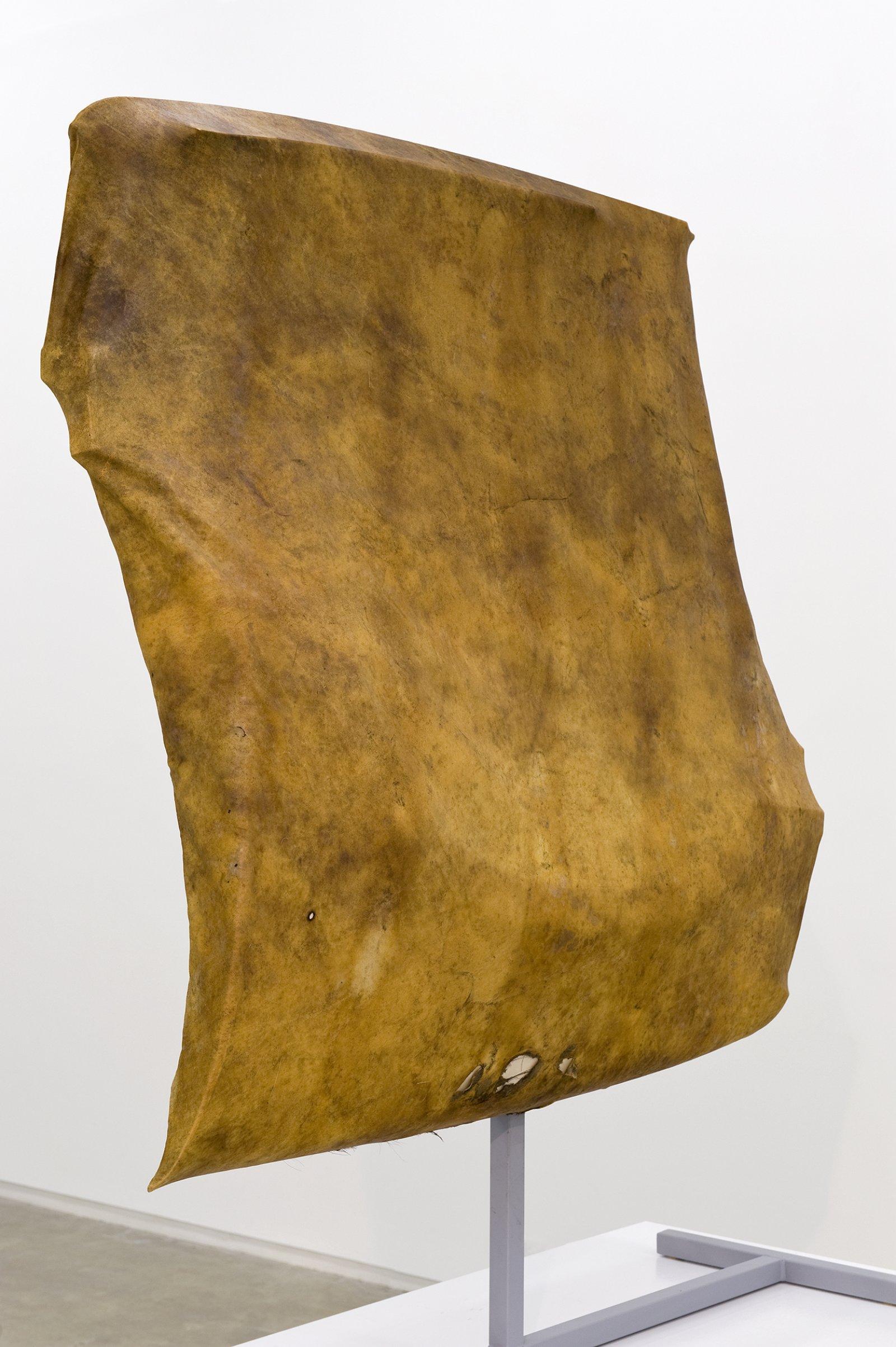 Brian Jungen, Tomorrow, Repeated(detail), 2010, moose hide, car fenders, chest freezer, steel, 96 x 61 x 30 in. (244 x 156 x 75 cm)