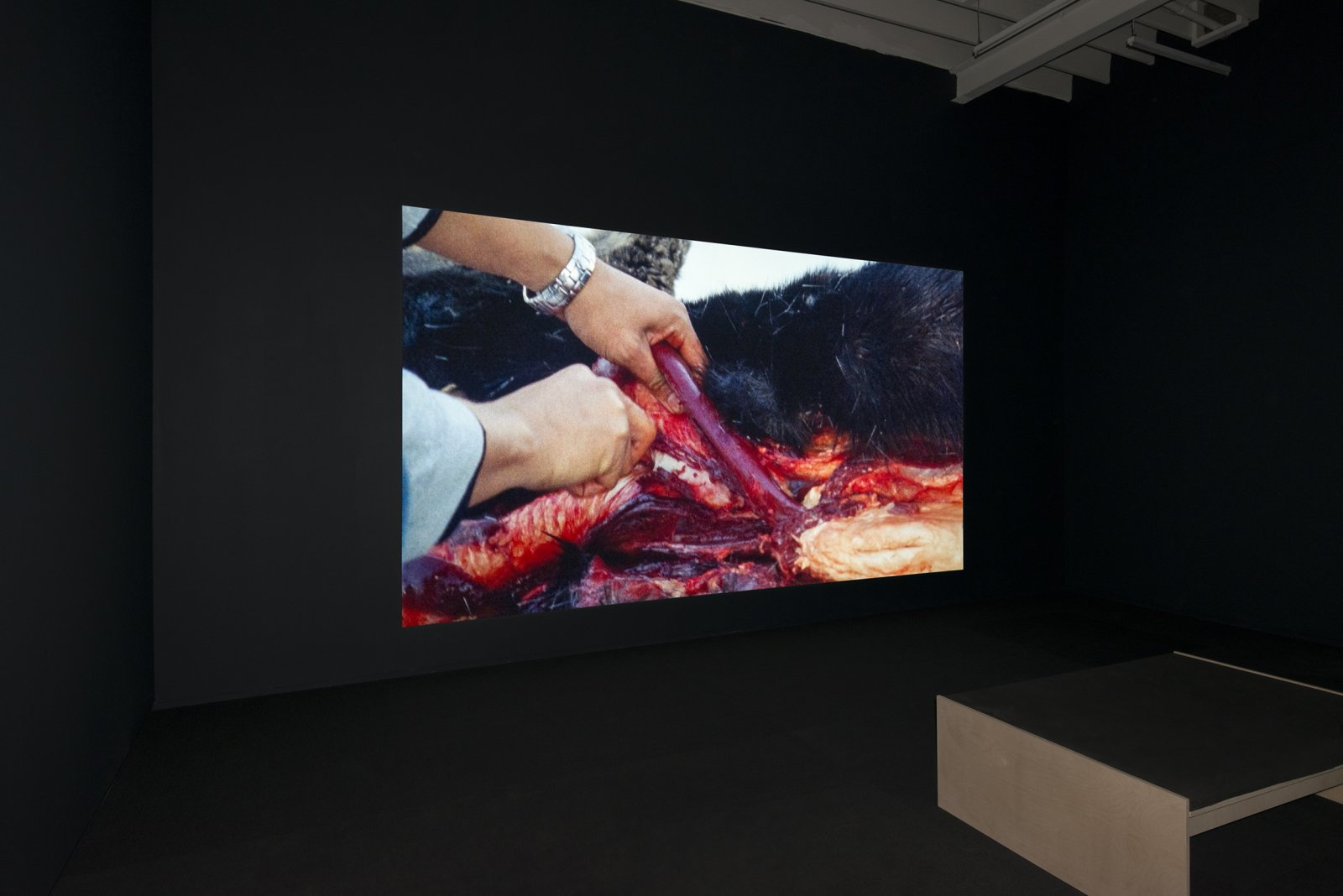 Brian Jungen and Duane Linklater, Modest Livelihood, 2012, super 16mm film, transferred to blu-ray, 50 minutes, silent