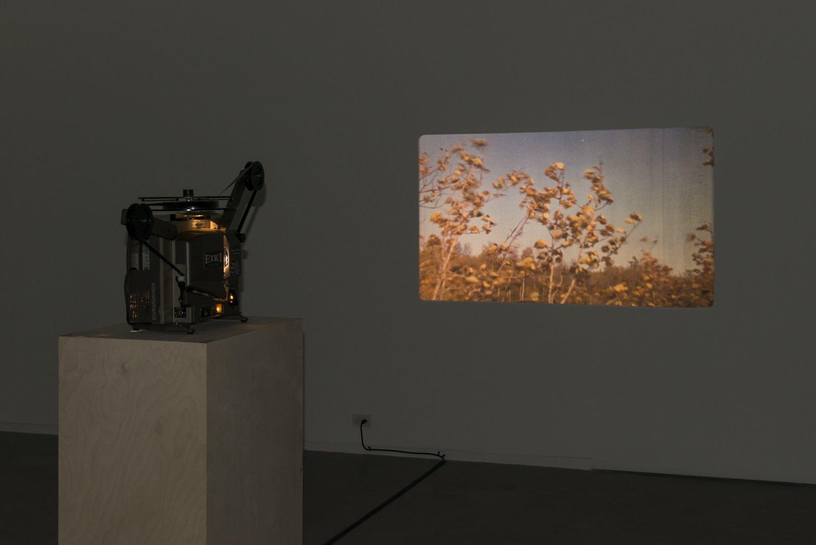 Brian Jungen and Duane Linklater, Stalker, 2013, super 16mm film loop on projector, 2 minutes, 54 seconds