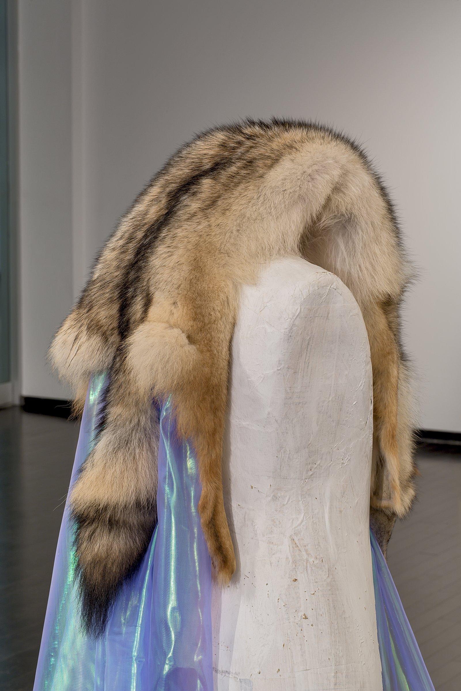 Duane Linklater, Beast of Burden(detail), 2016, coyote fur, dress form, gypsum, steel, wood, dimensions variable
