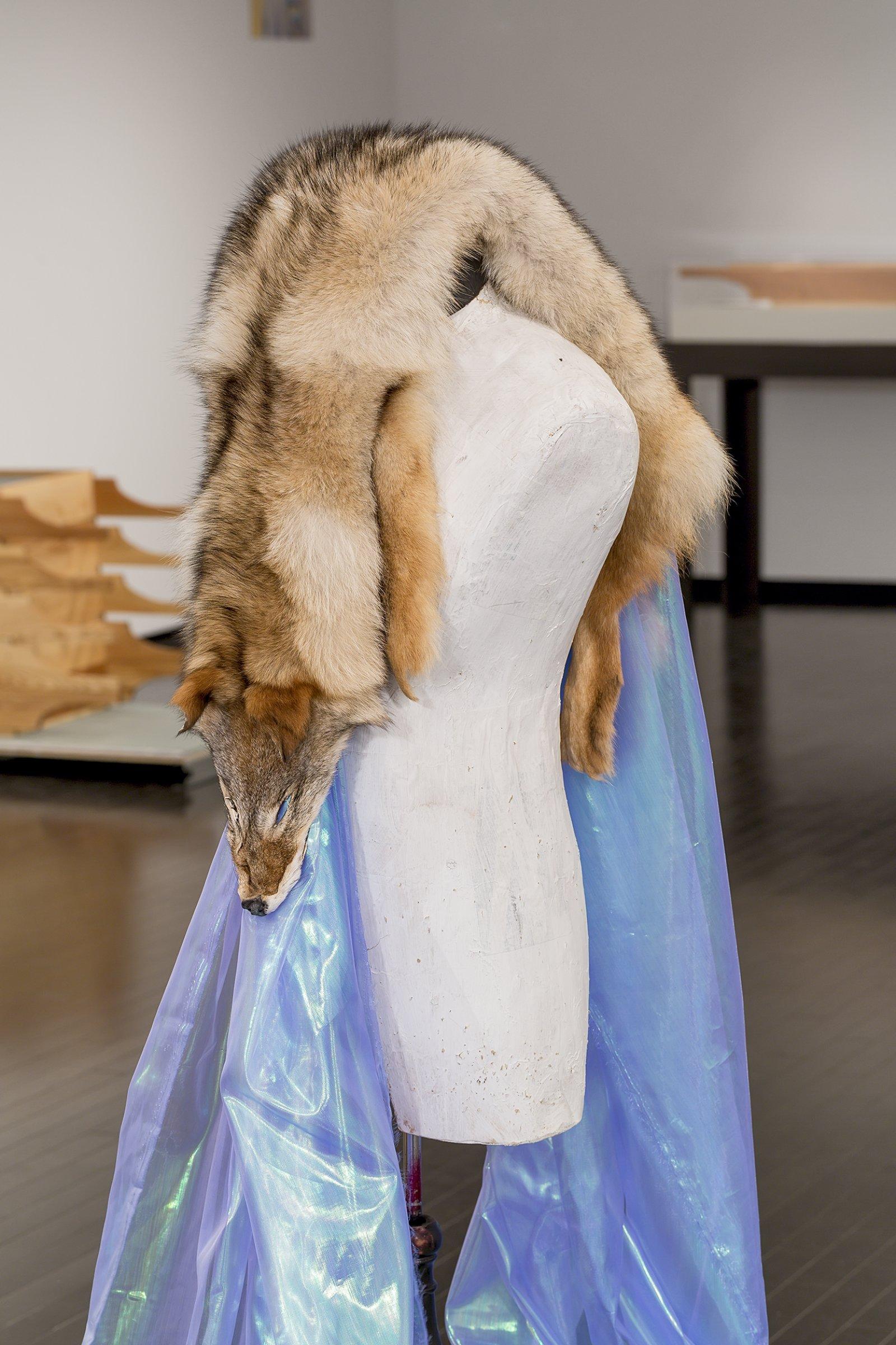 Duane Linklater,Beast of Burden(detail), 2016, coyote fur, dress form, gypsum, steel, wood, dimensions variable