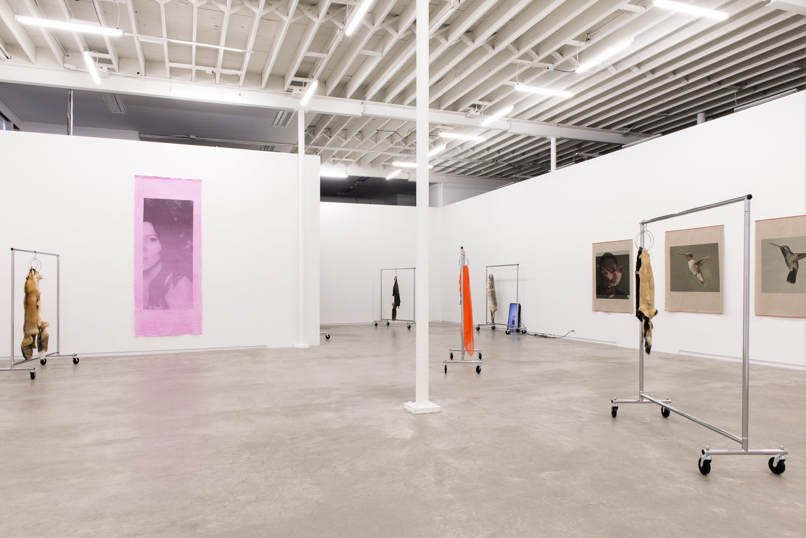 ​Duane Linklater, installation view, But the sun is up and you're going?, Catriona Jeffries, 2014​ by Duane Linklater