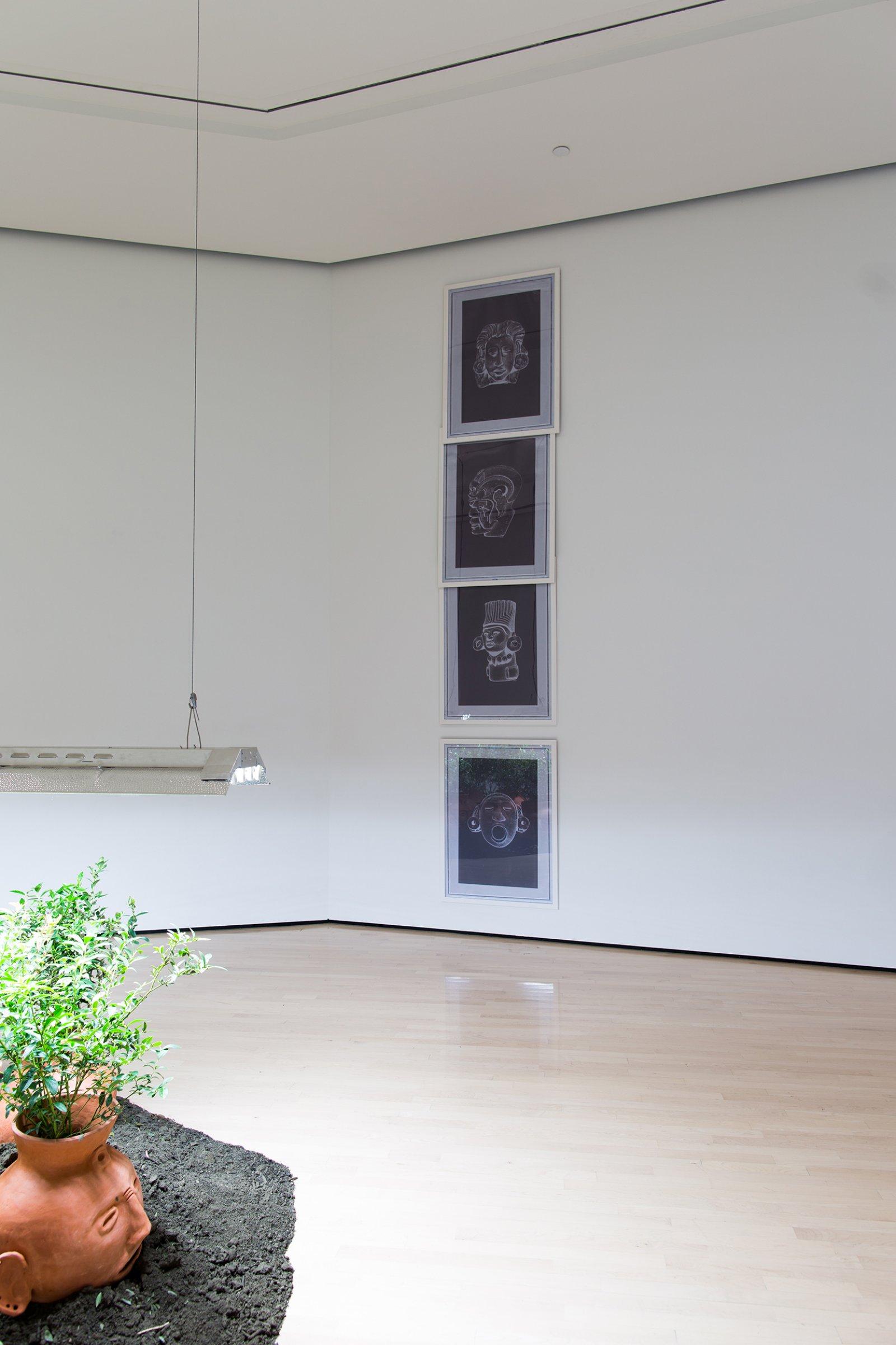 Duane Linkater, CALL 82, 2017, 4 framed digital prints, each 38 x 28 in. (97 x 71 cm). Installation view, Field Station: Duane Linklater, MSU Broad, East Lansing, MI, 2017 by Duane Linklater
