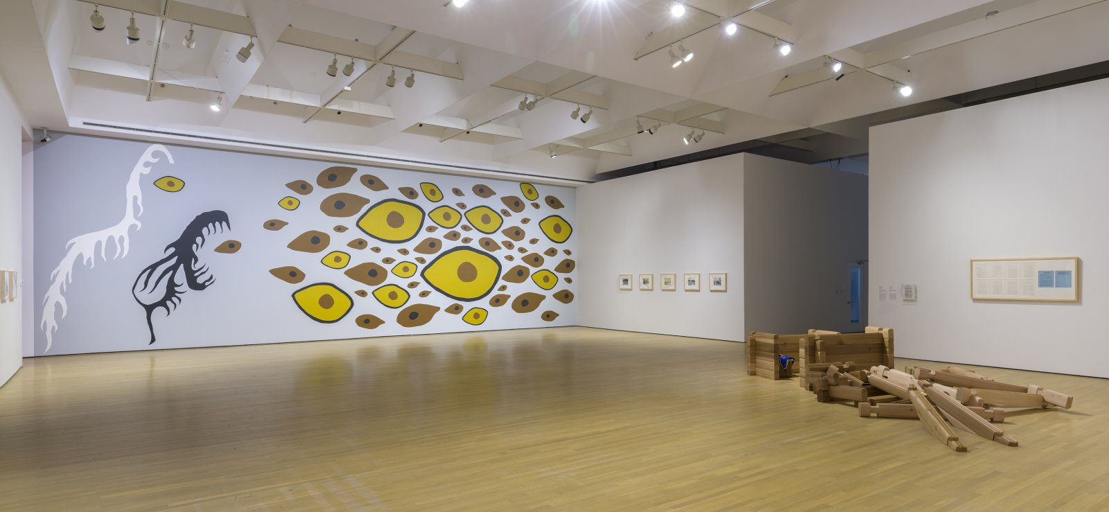 Duane Linklater, Earth Mother Hair, Indian Hair, and Earth Mother Eyes, Indian Eyes, Animal Eyes, 2017, paint on interior wall of the Musée d'art contemporain de Montréal, from a series of small paintings of eyes and hair based on a photo of Norval Morrisseau's Earth Mother and Her Children (1967), painting labour by Julie Ouellet, absence of the artist, dimensions variable. Installation view, In Search of Expo 67, Musée d'art contemporain de Montréal, 2017