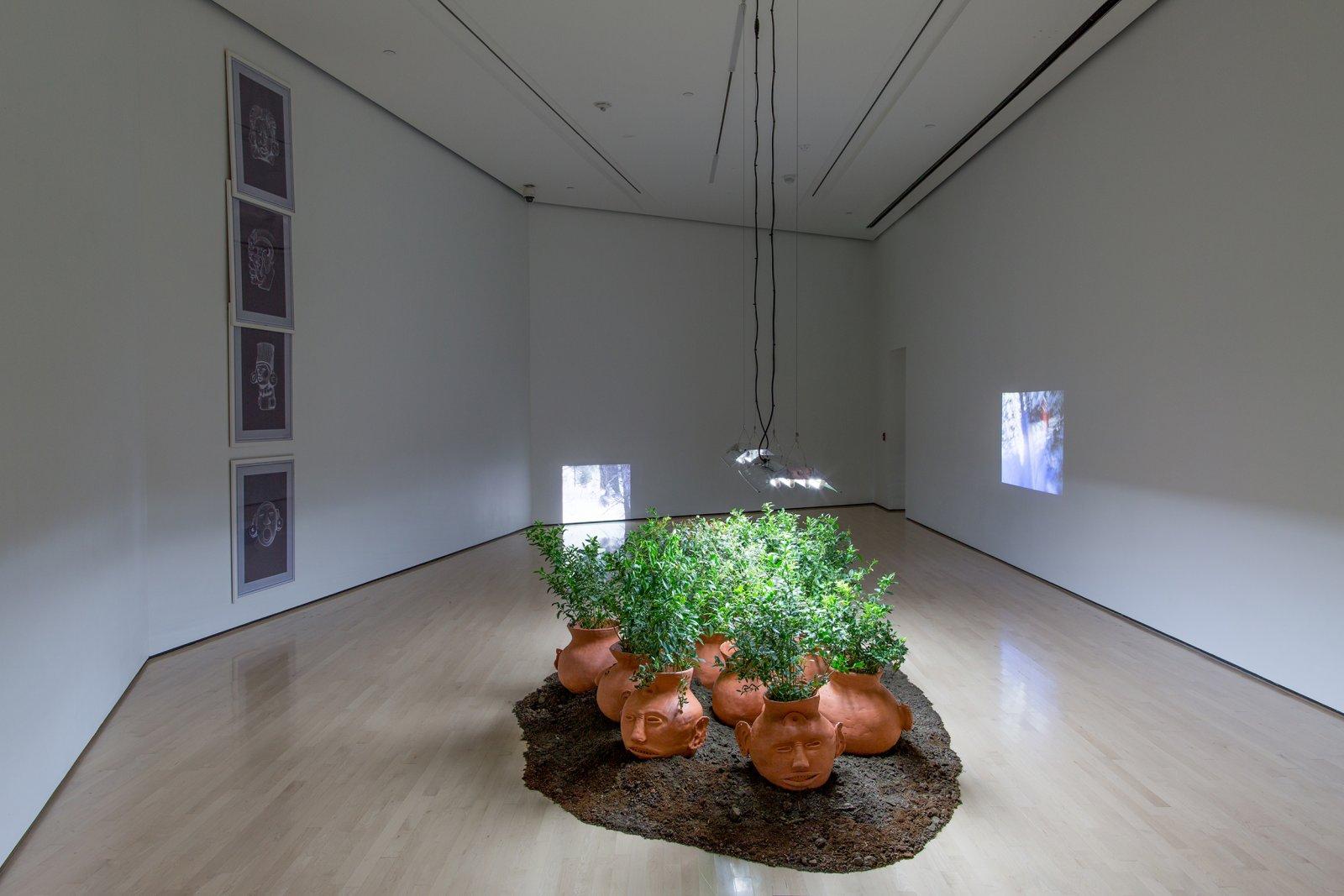 Duane Linkater, installation view, Field Station: Duane Linklater, MSU Broad, East Lansing, MI, 2017 by Duane Linklater