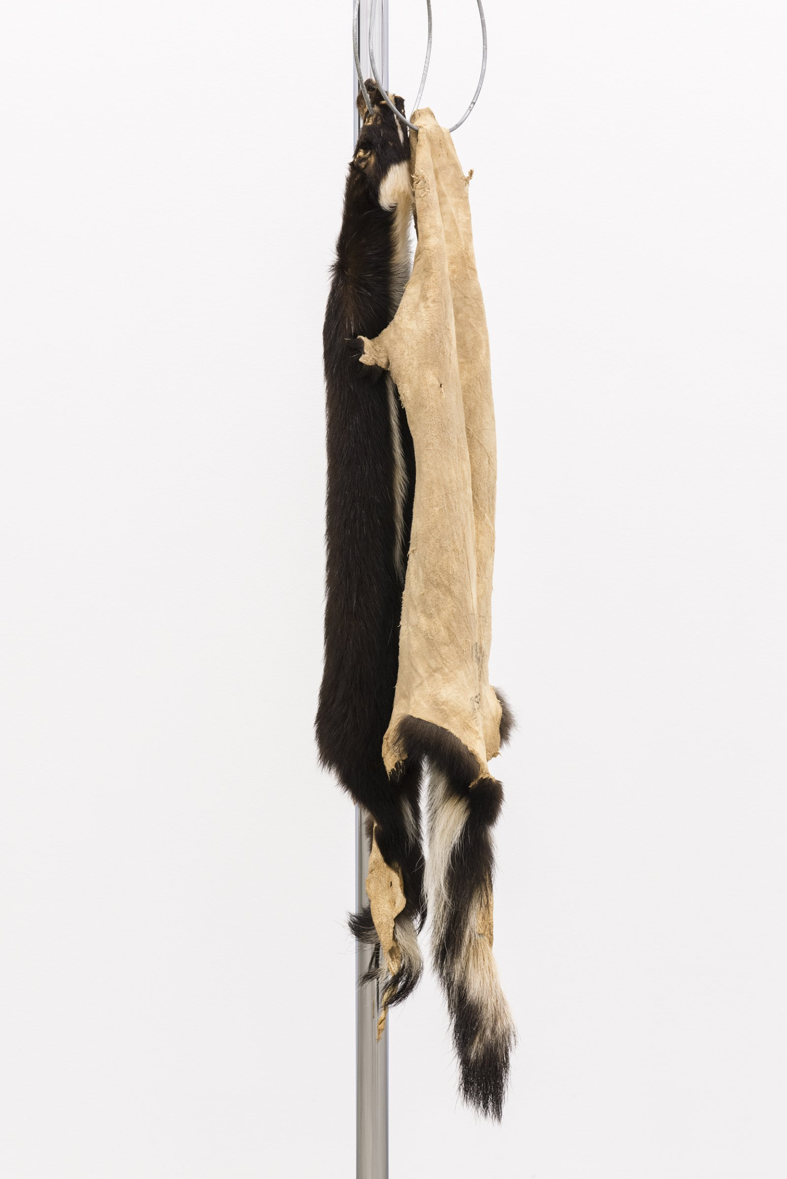 Duane Linklater, The marks left behind​ (detail), 2014, skunk furs, garment rack, hangers, 66 x 60 x 20 in. (168 x 151 x 52 cm) by Duane Linklater