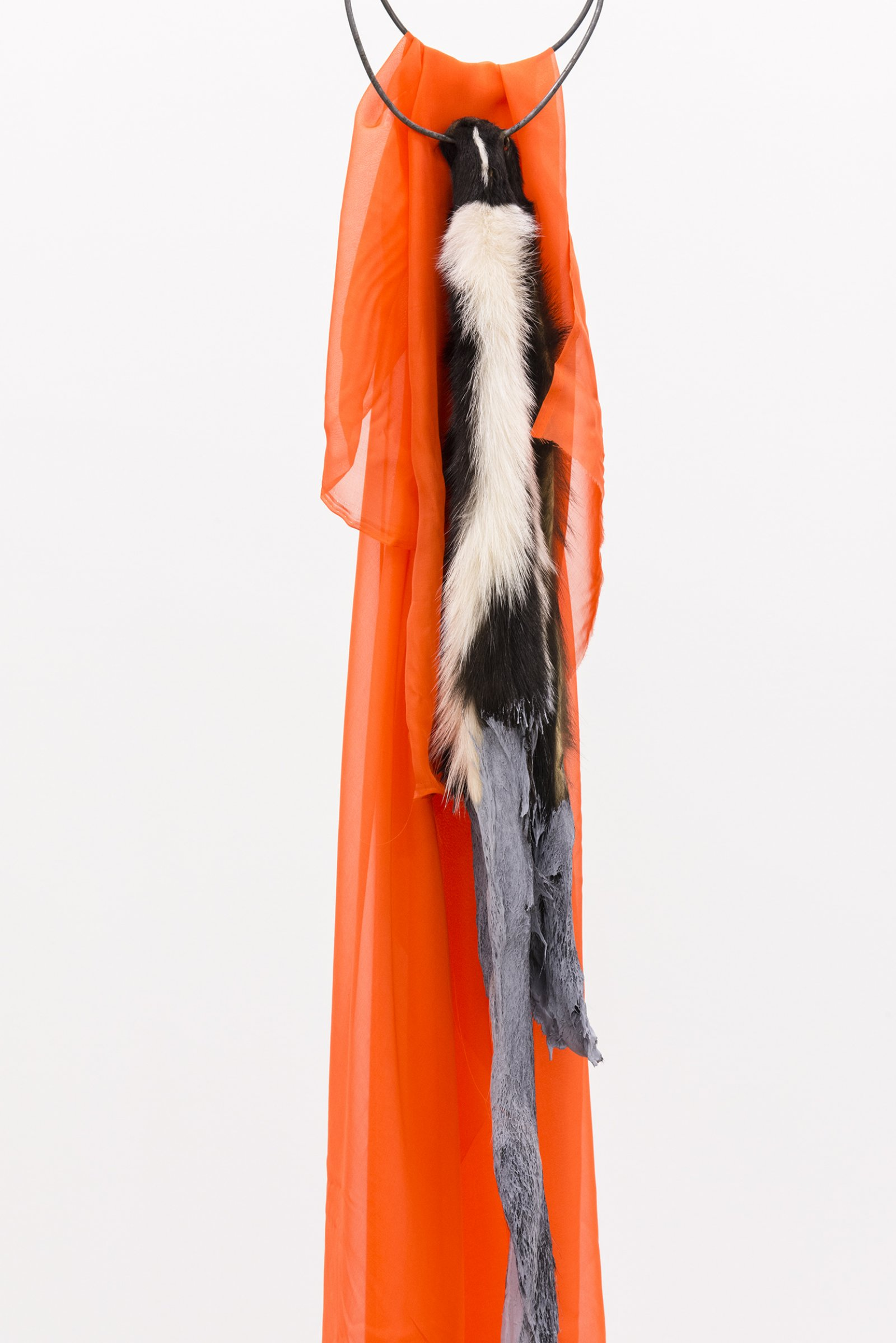 Duane Linklater, The most beautiful thing in the world (detail), 2014, skunk fur, paint, garment rack, hangers, fabric, 66 x 60 x 20 in. (168 x 151 x 52 cm) by Duane Linklater
