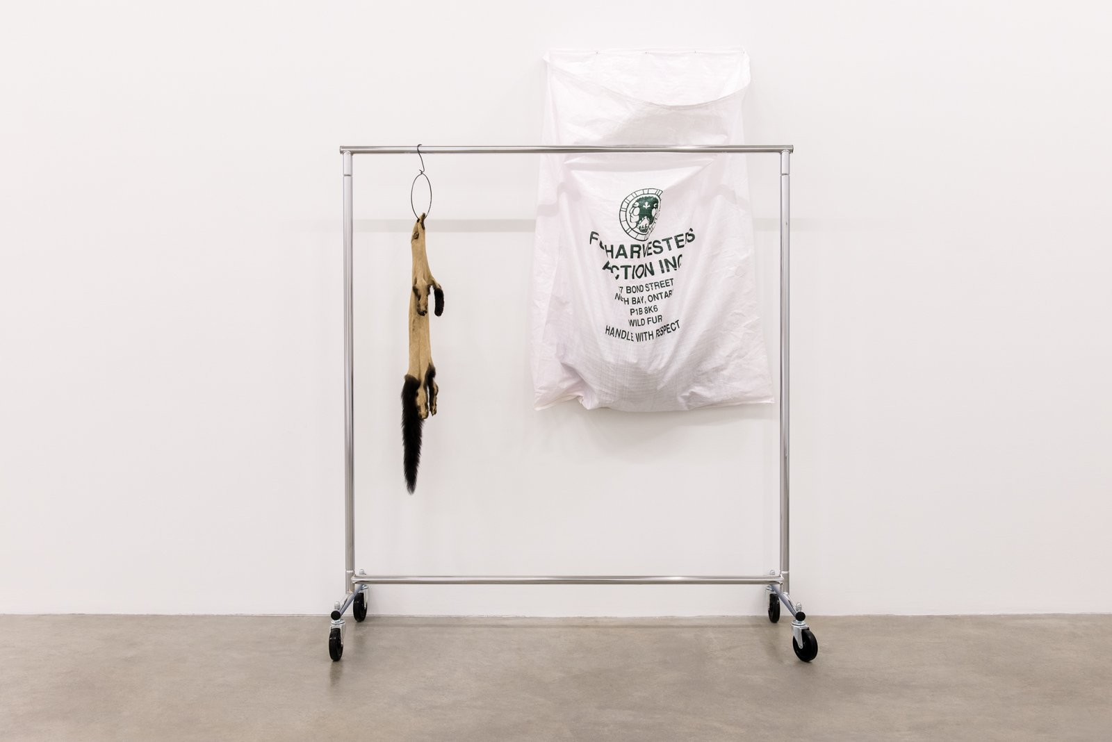 Duane Linklater, The state that I seek to name, 2014, fisher fur, garment rack, hanger, hand dyed bag, coat, 82 x 60 x 20 inches (207 x 151 x 52 cm)