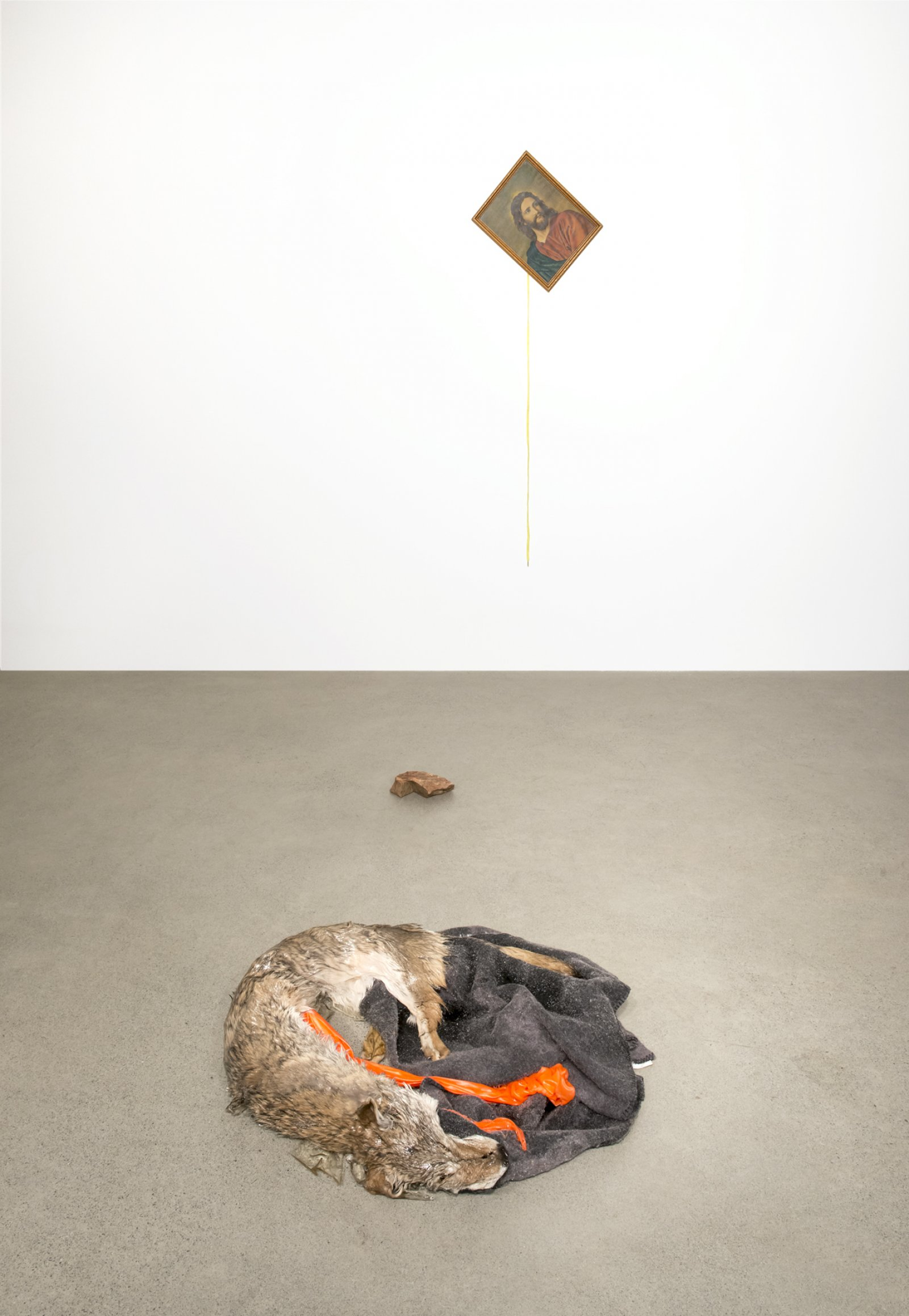 Duane Linklater, Torpor, 2016, coyote fur, wool blanket, polyester cloth, resin, found picture, shoelace, brick, dimensions variable