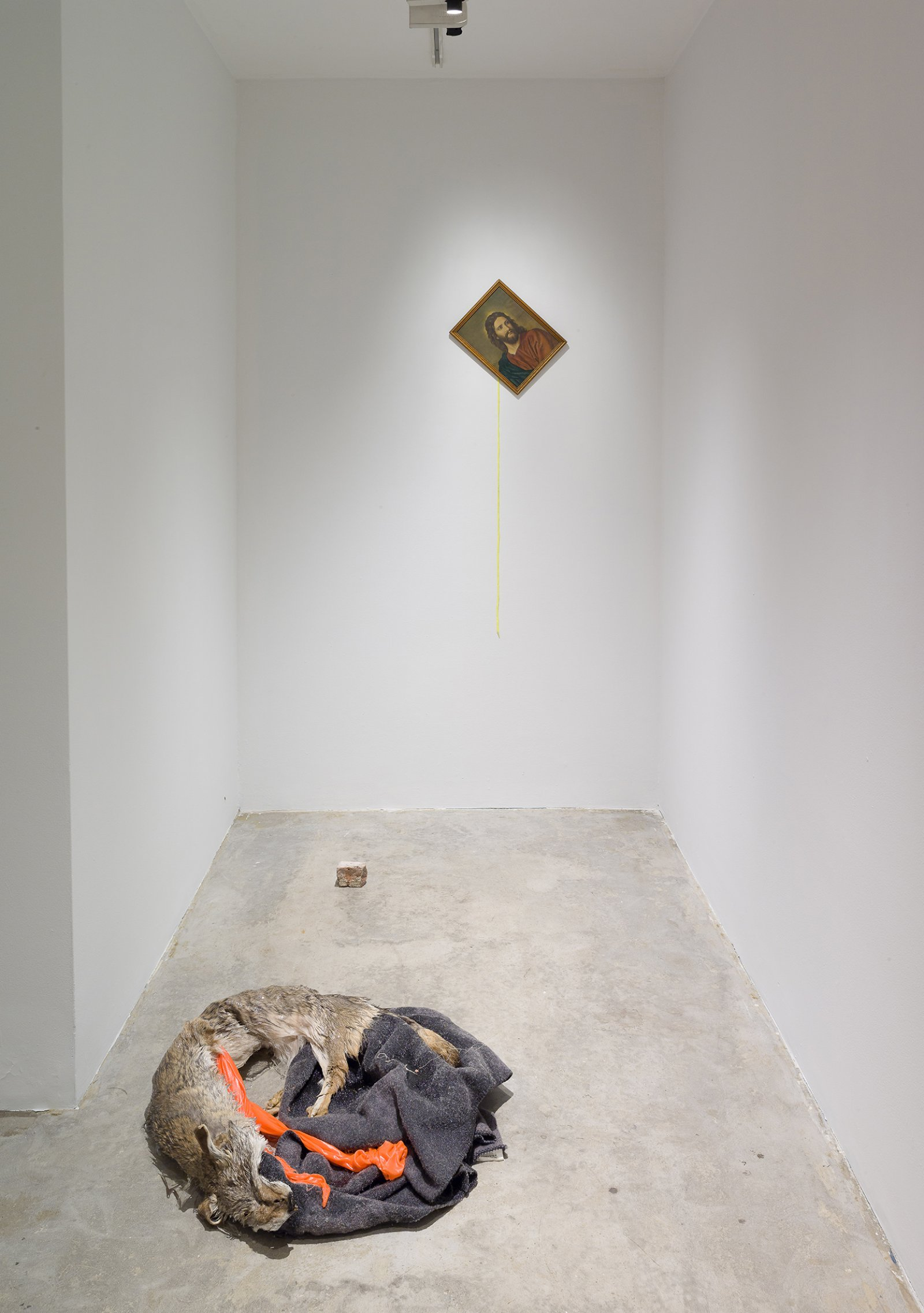 Duane Linklater, Torpor, 2016, coyote fur, wool blanket, polyester cloth, resin, found picture, shoelace, brick, dimensions variable by Duane Linklater
